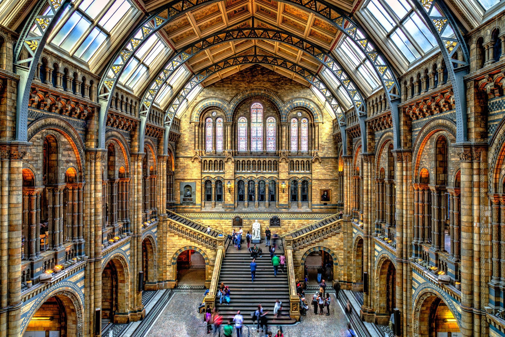 London - Natural History Museum by Lukas Proszowski