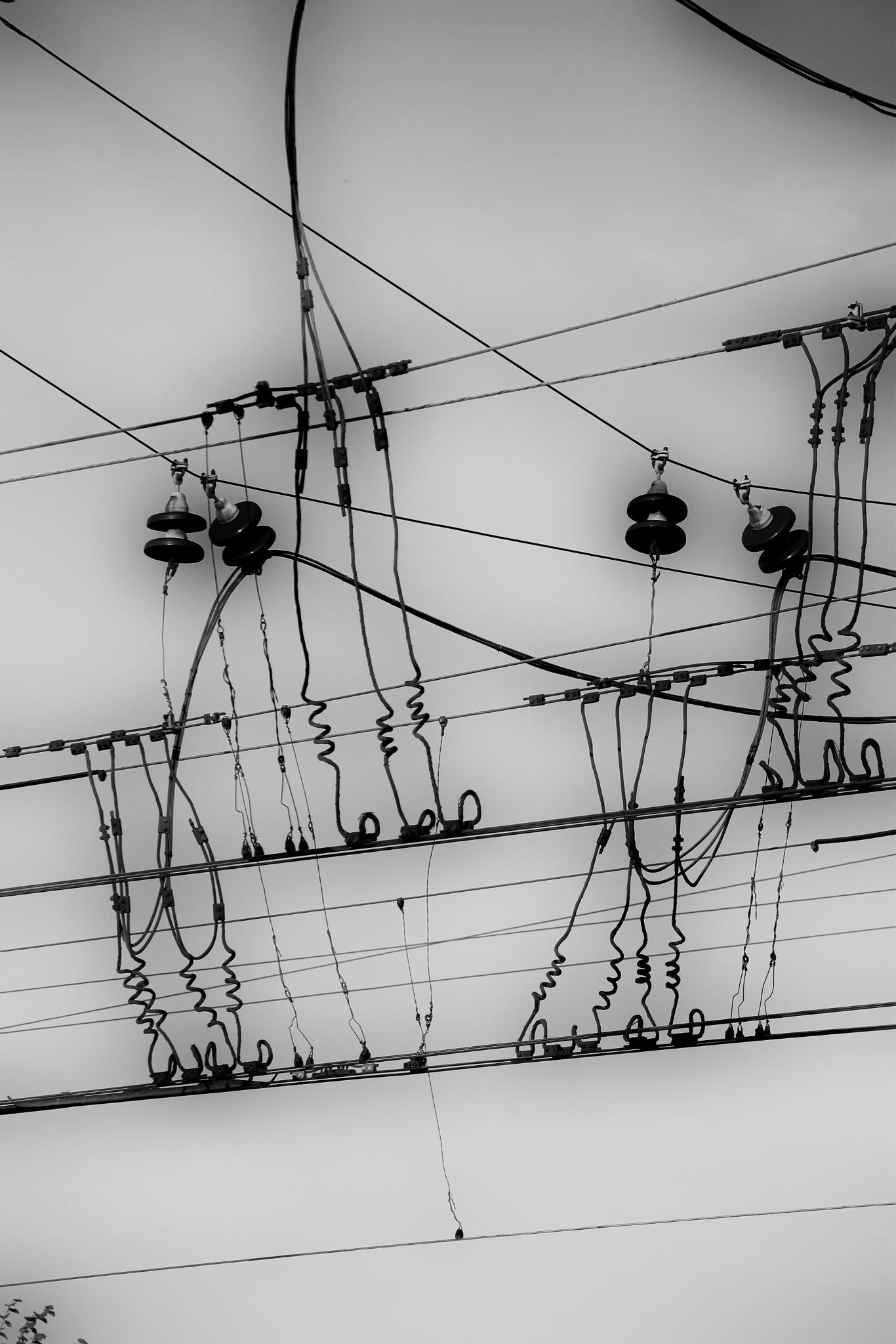 Rails and wires by Art Wind