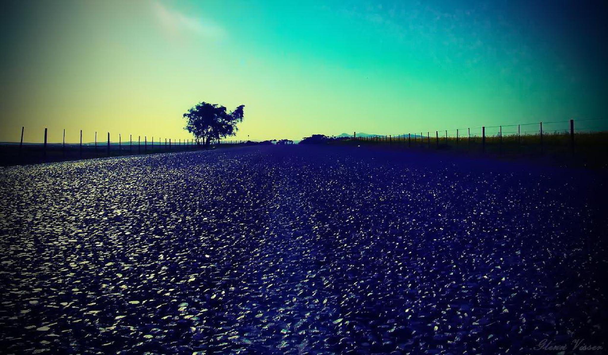 Journey by Glenn Gerard