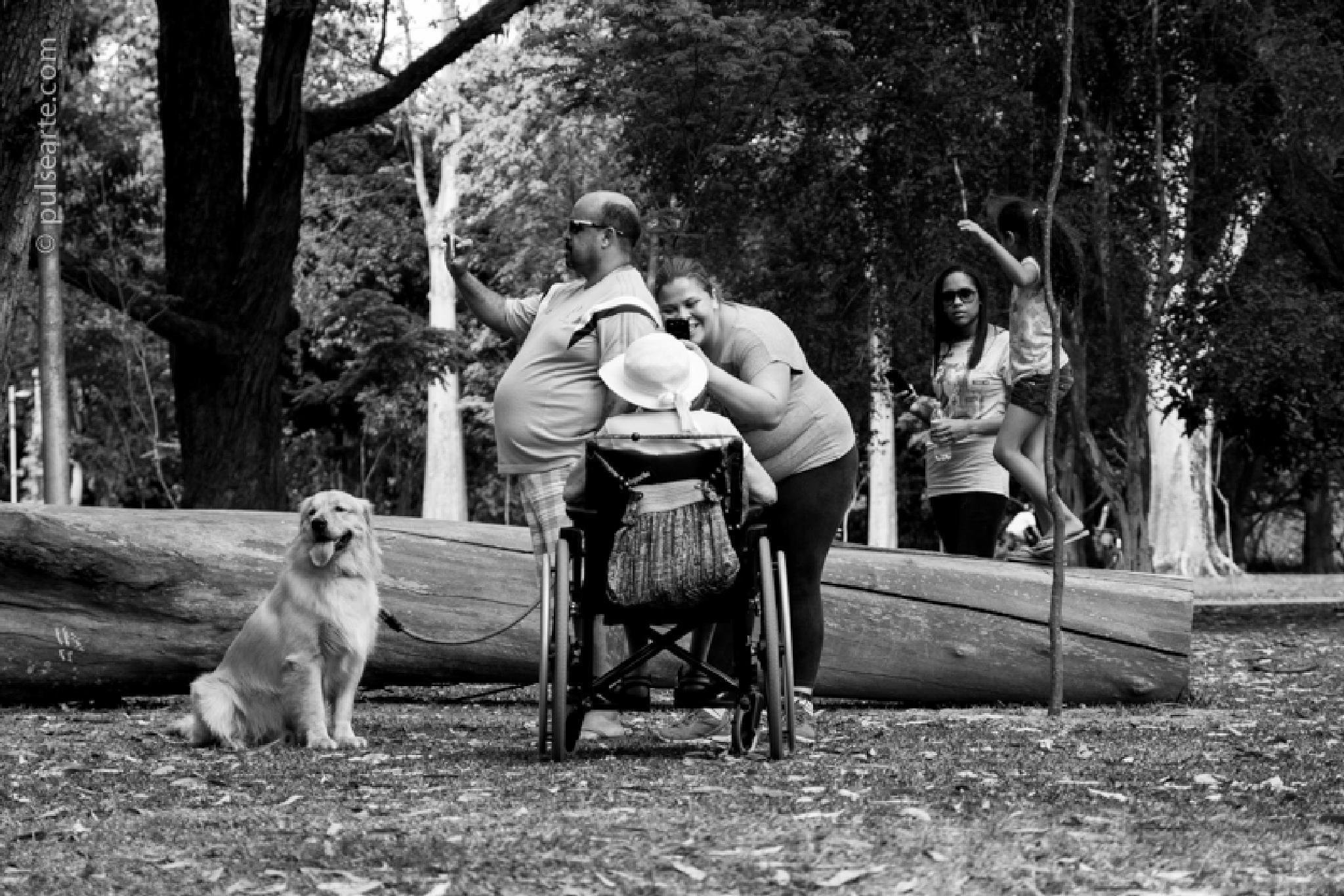 Fotos no parque by rodrigogodoyferreira