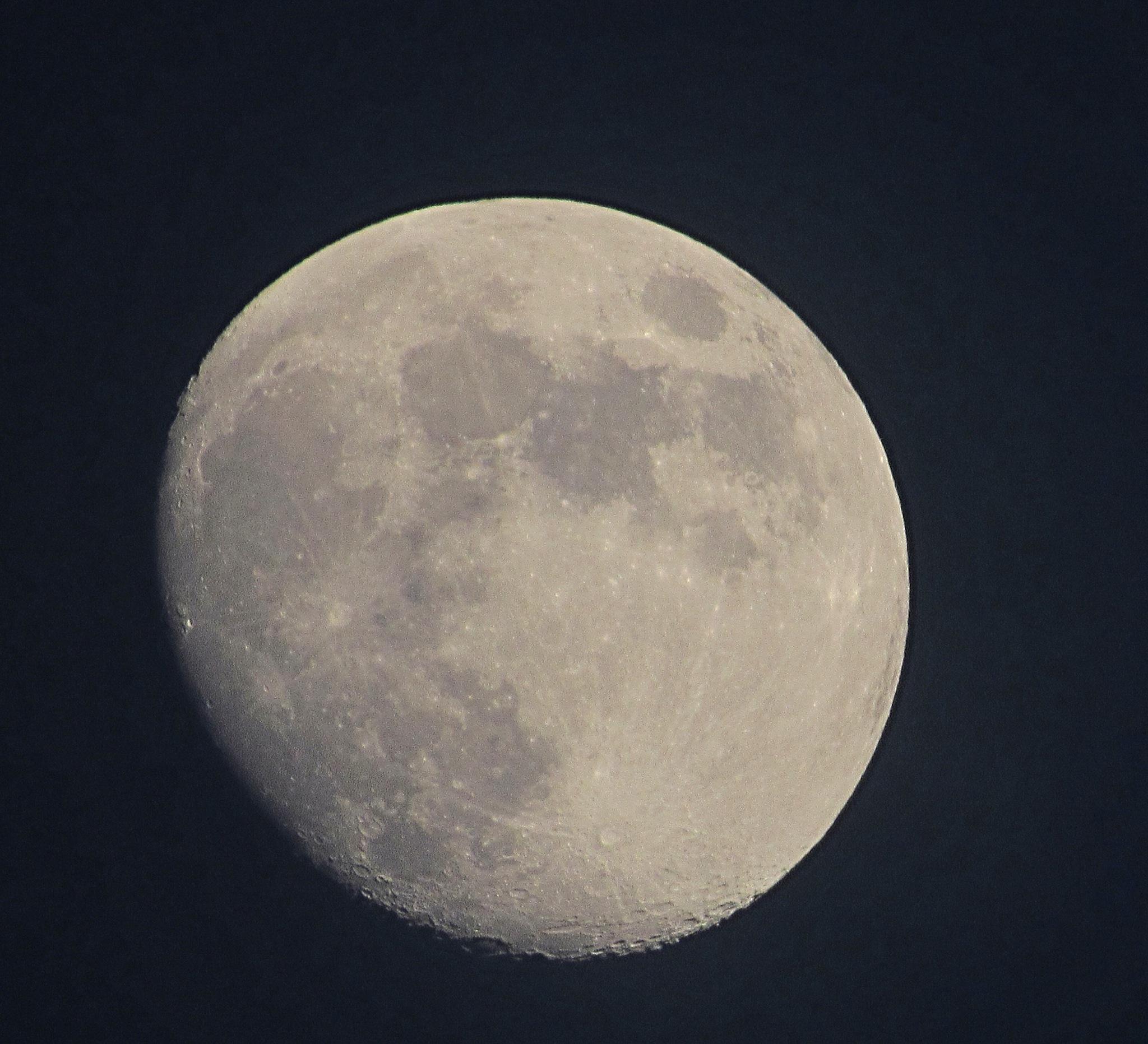 Moon Rise by henrymonette