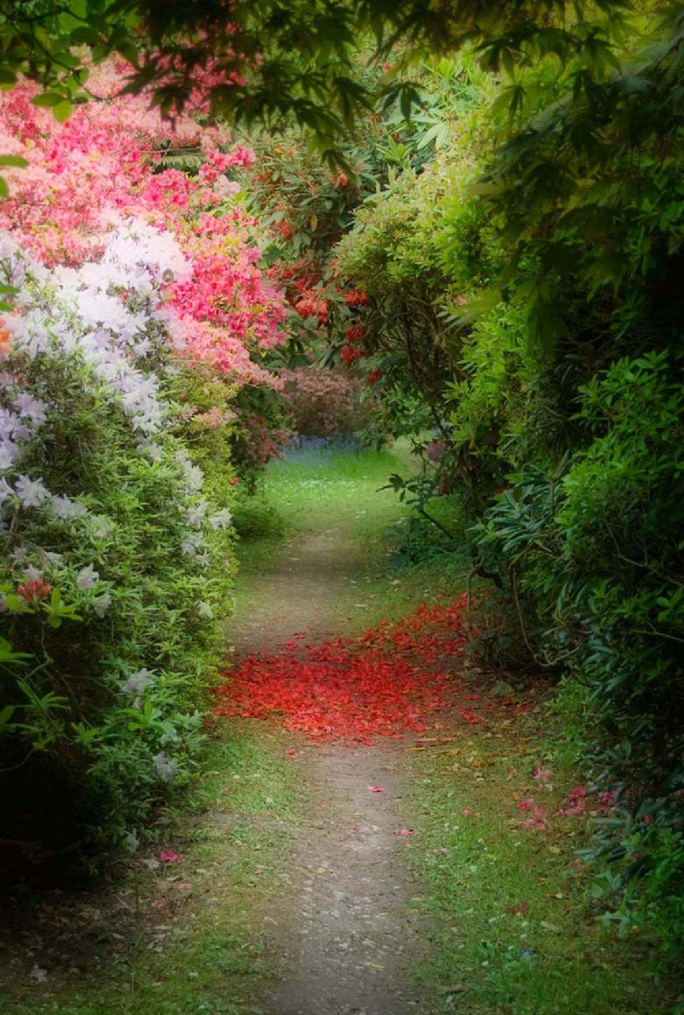 Exbury Gardens by Juliet Evans Photography