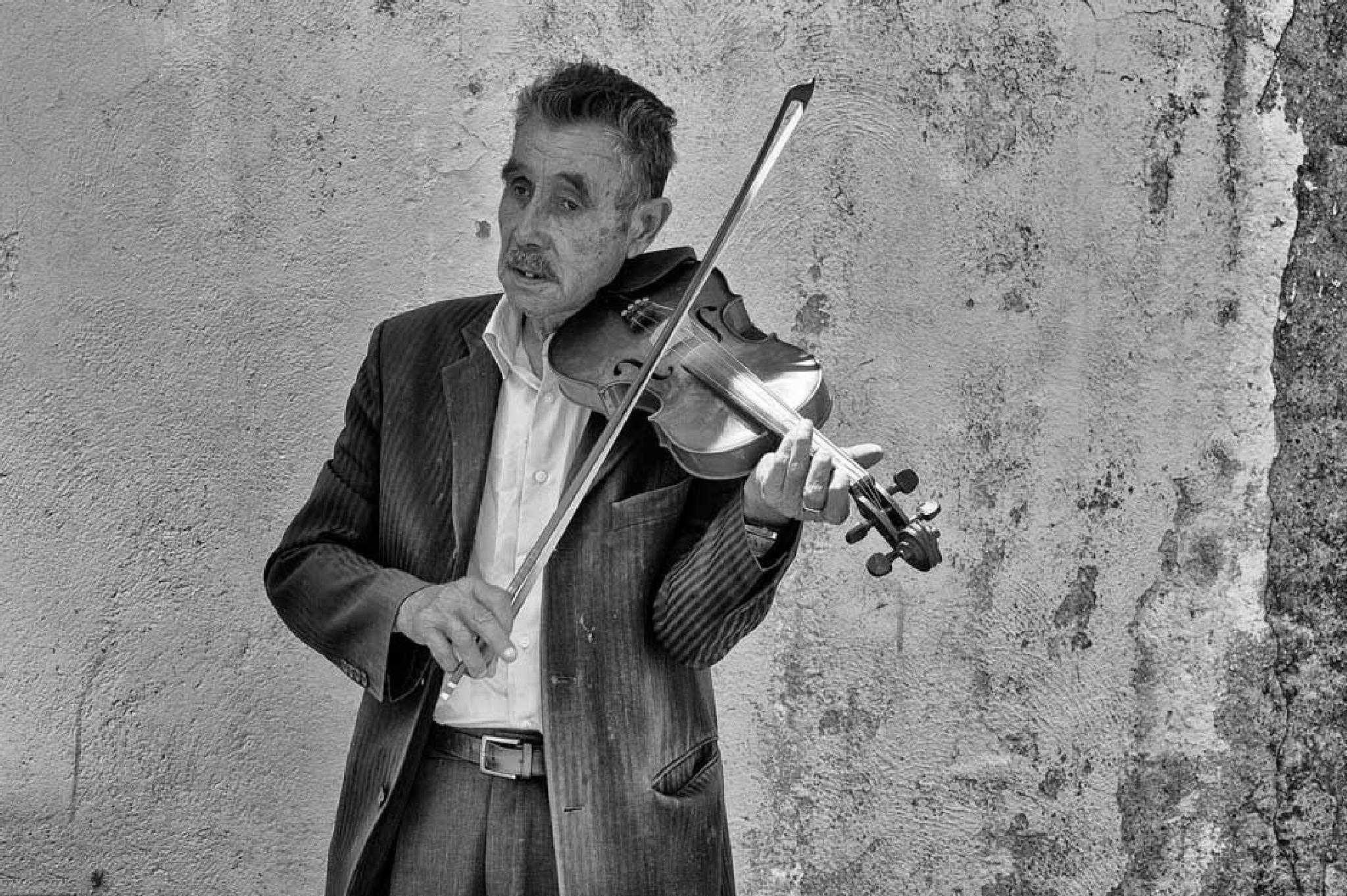 The violinist by Juliet Evans Photography