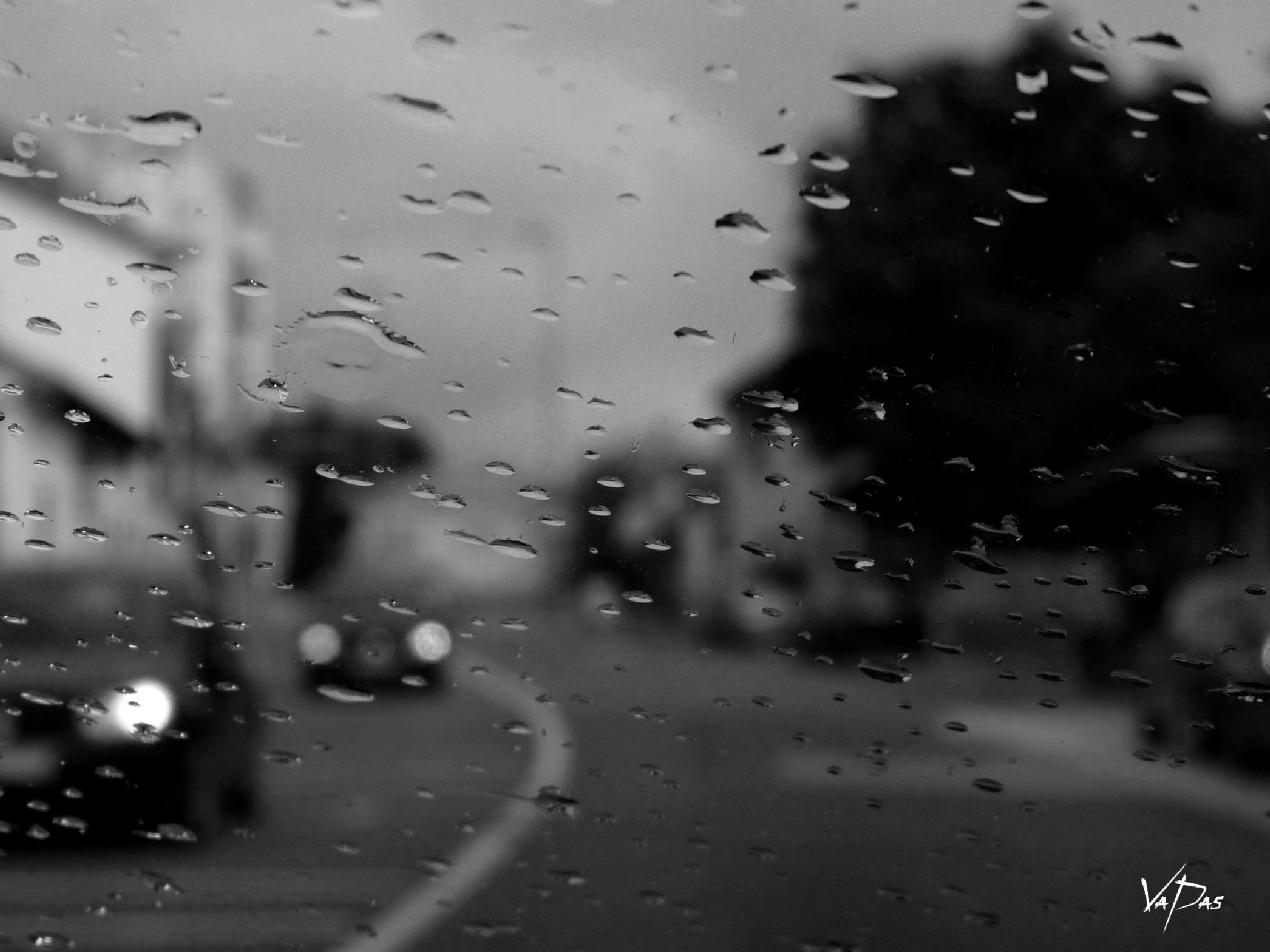 Rain ..... by Vanja Pastuhovic
