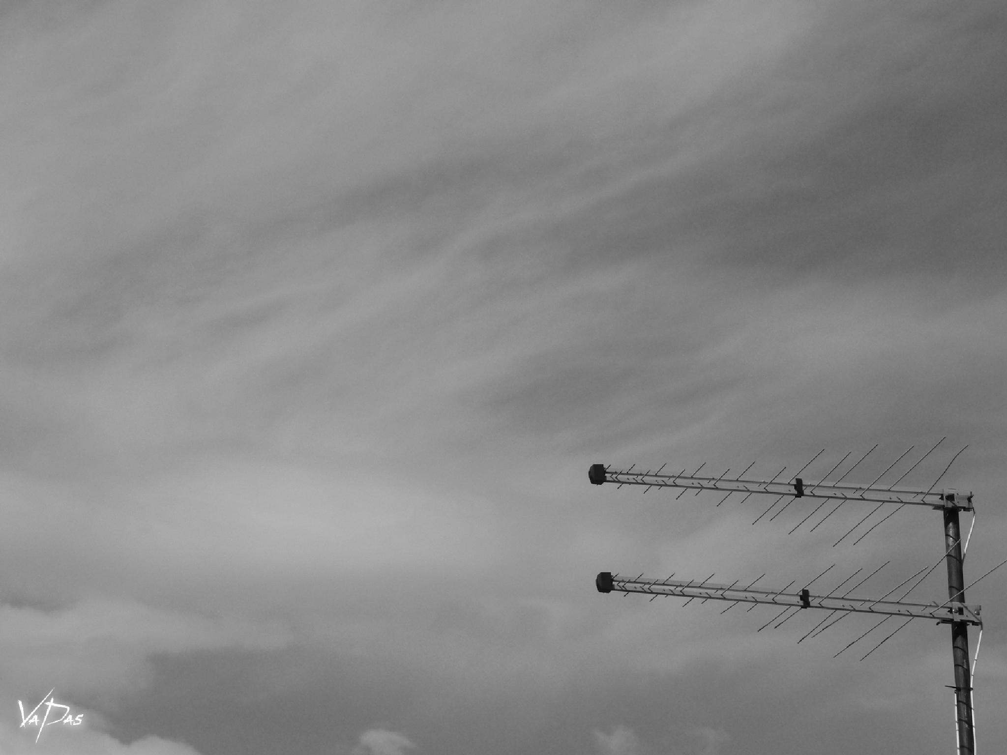 Aerial twins ..... by Vanja Pastuhovic