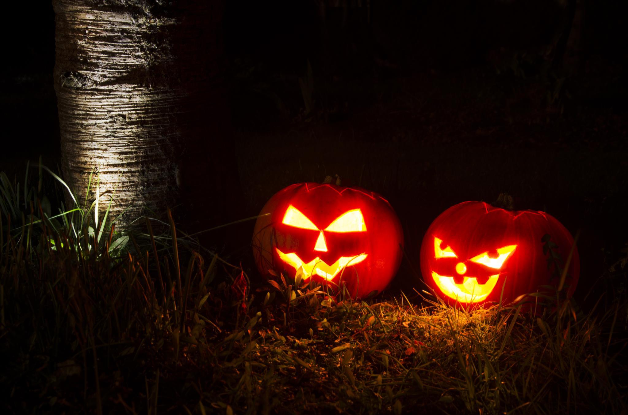 Photo in Random #helloween
