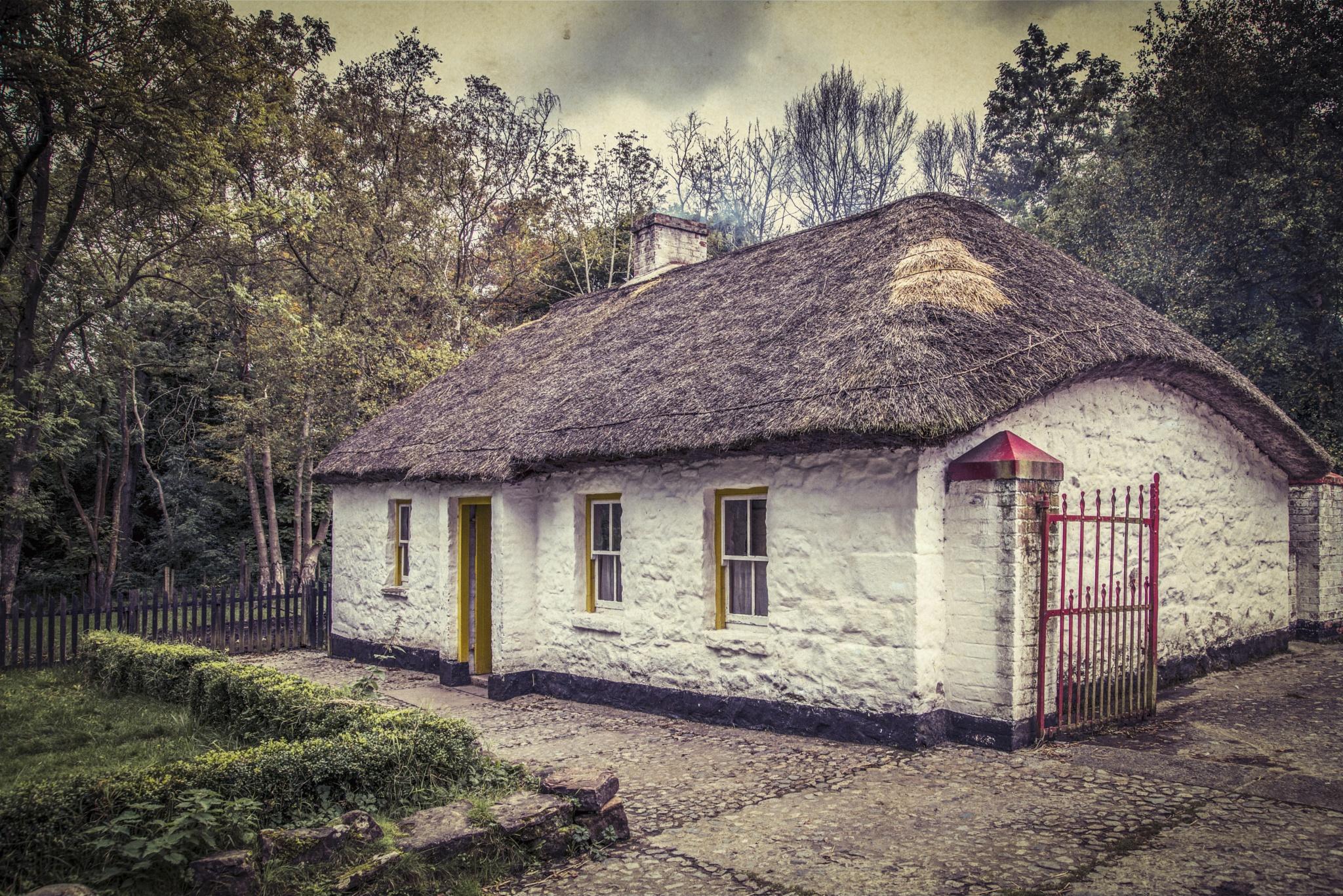 Vintage Farm House by Zoltan Kovacs