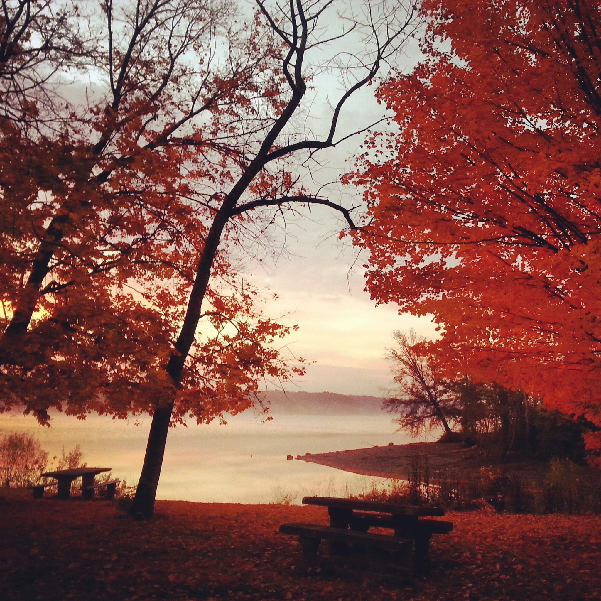 Autumn Sunrise Light shining through by livinjustly