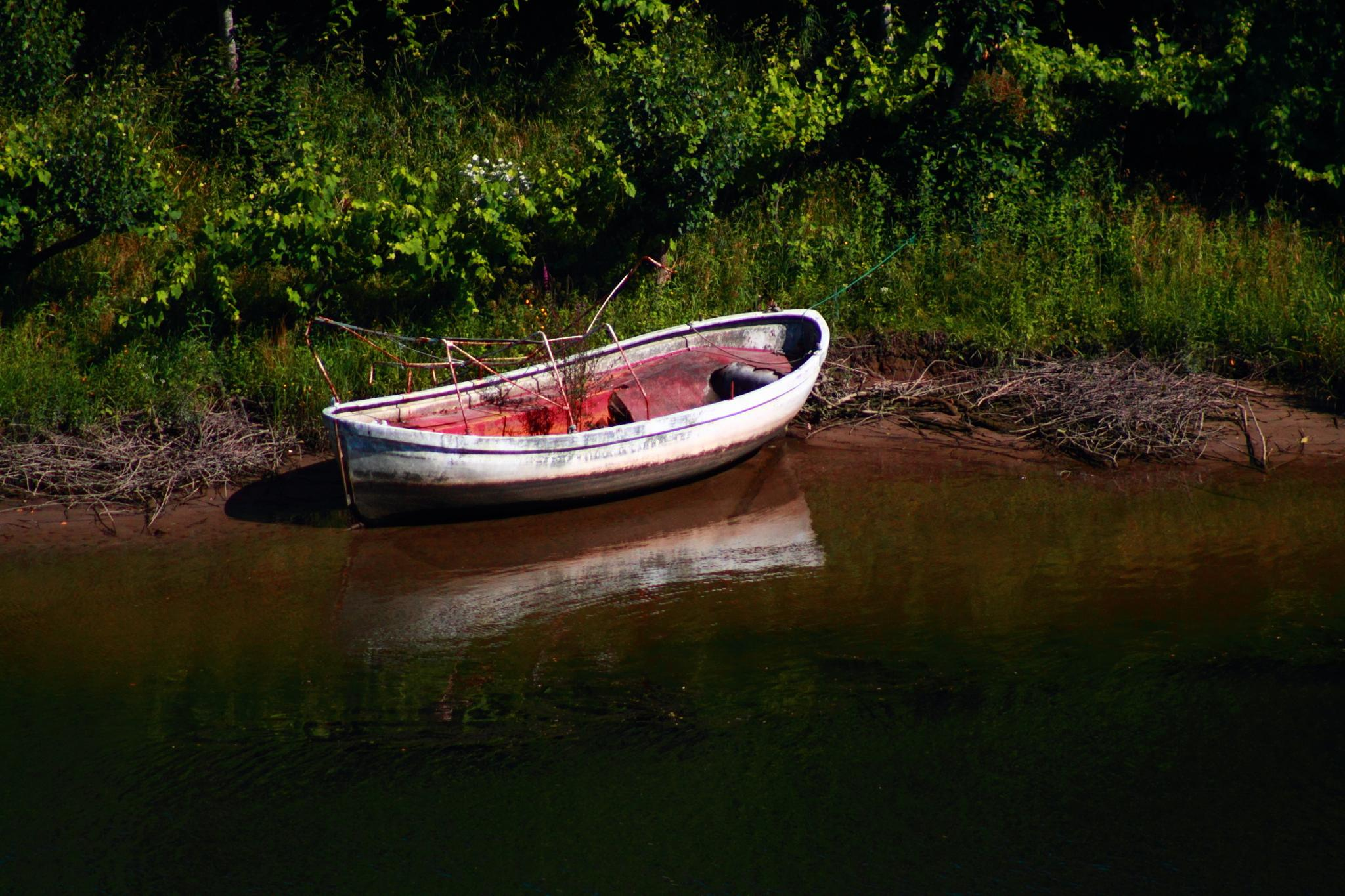 Photo in Landscape #boat #river