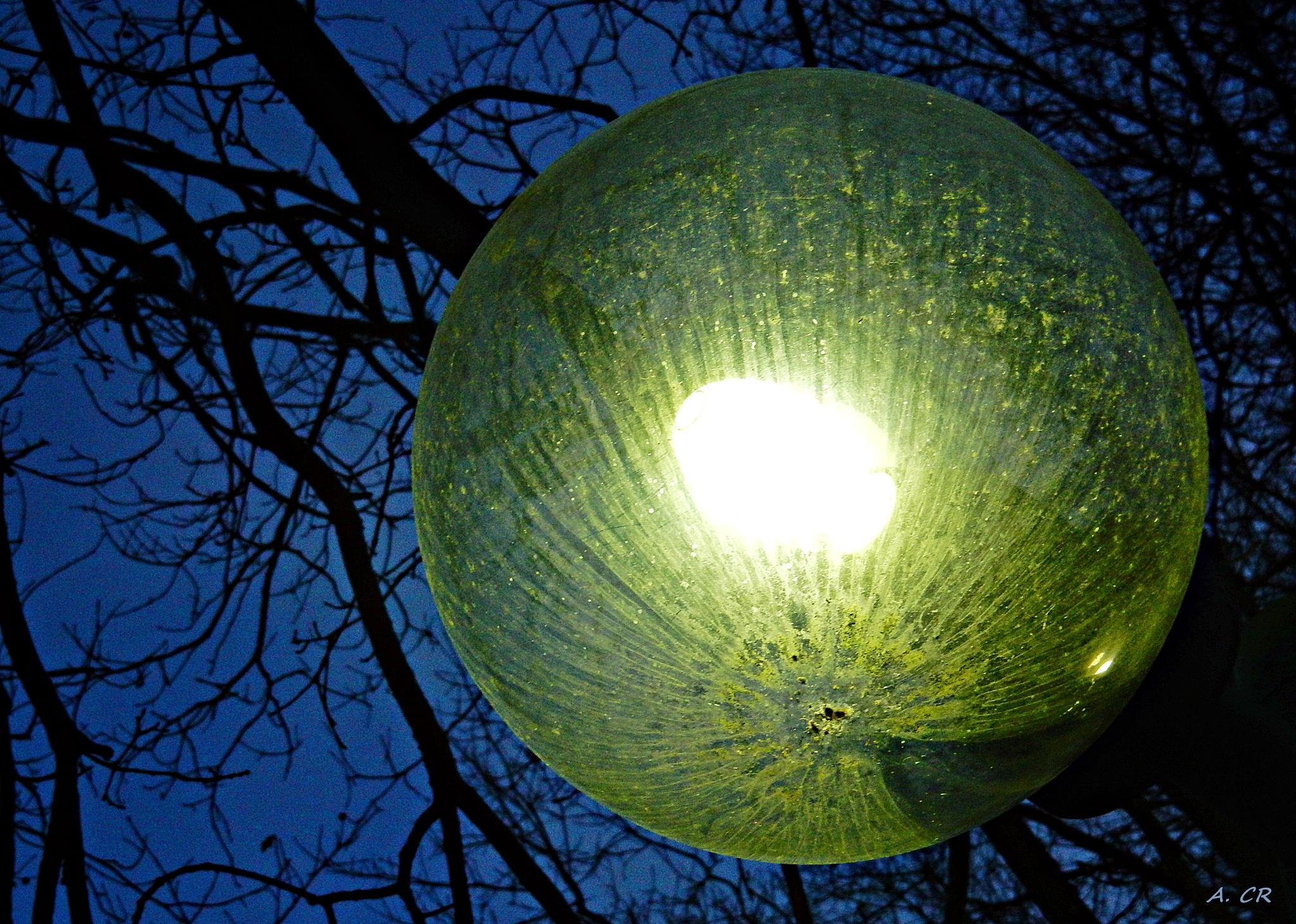 Lantern by A. Castellano Rodriguez