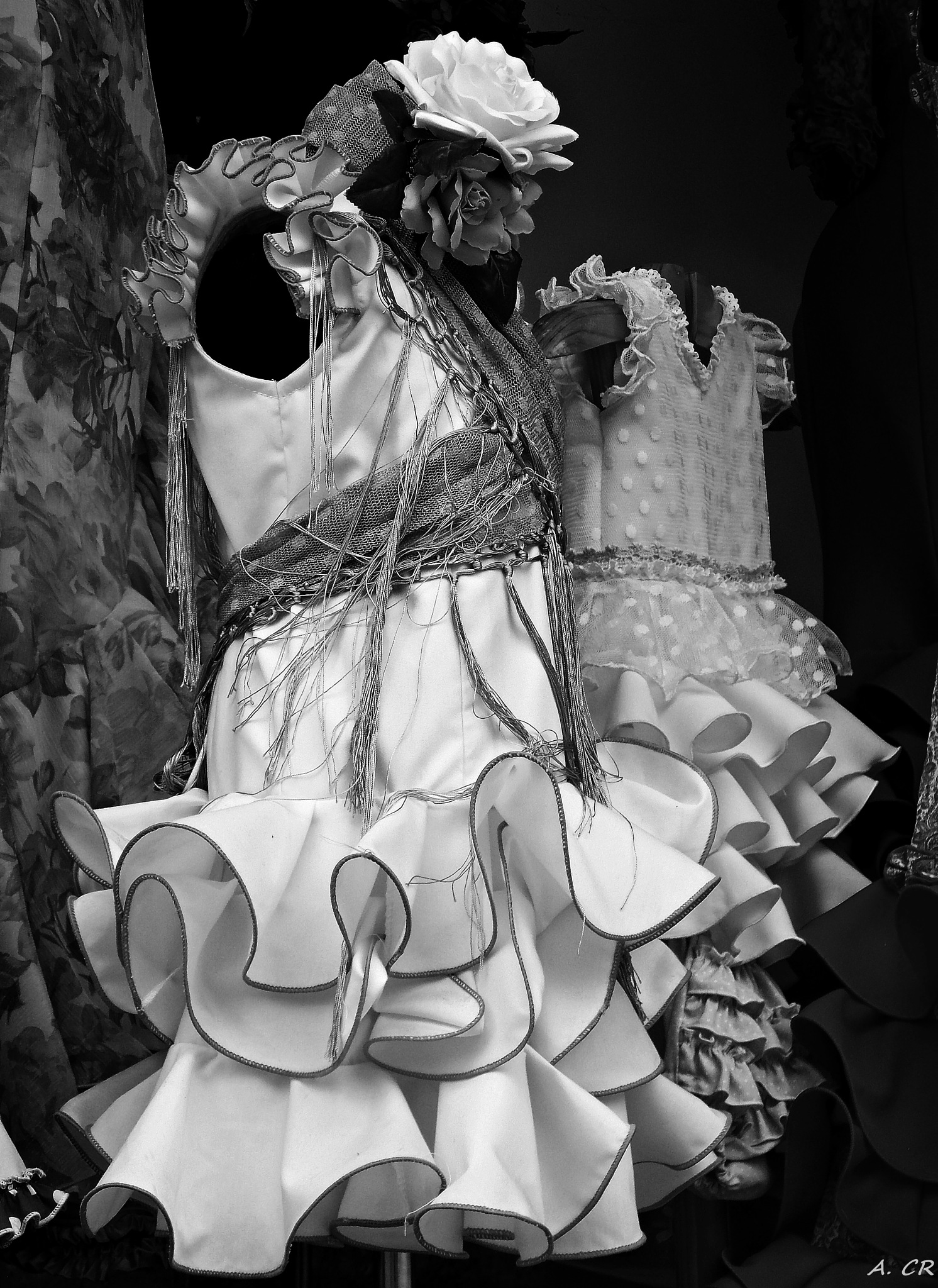 Flamenco IV by A. Castellano Rodriguez