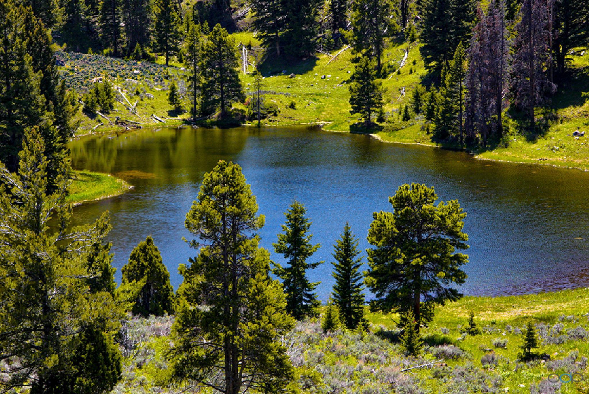 Alpine mountain pond . . . by OneDigitalPlacePhotography