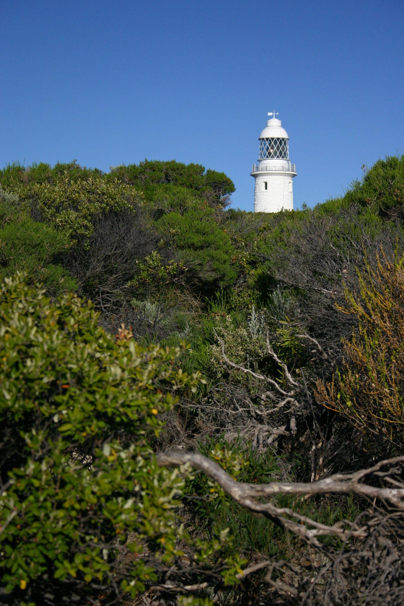 Cape Naturaliste Lighthouse by Fraser McCulloch