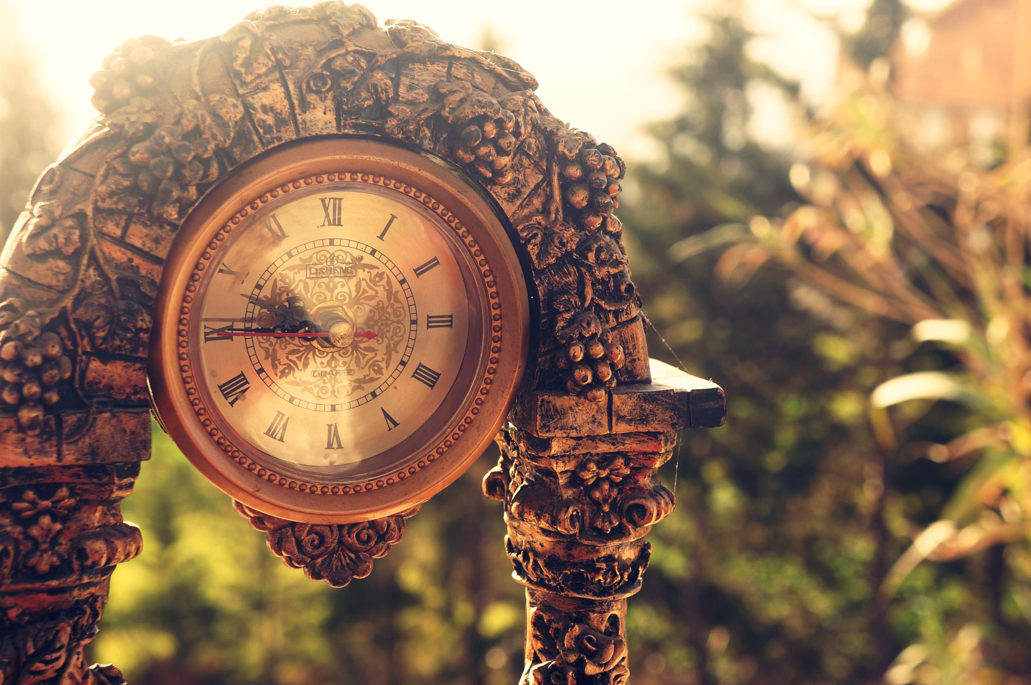 Time by Ziani Nora
