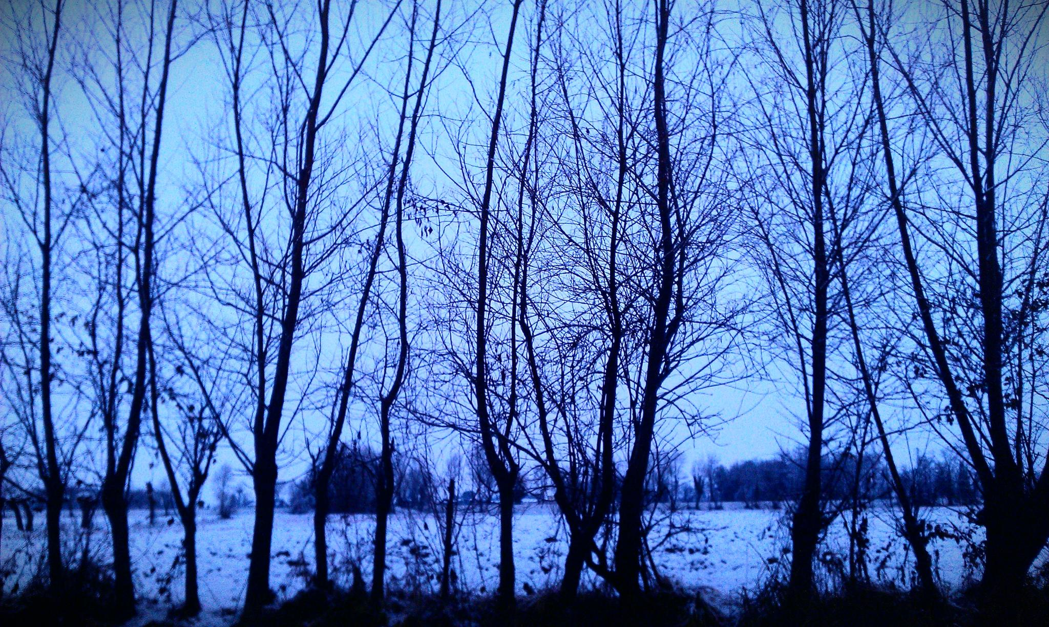 snow in blue by erica.zanon.9