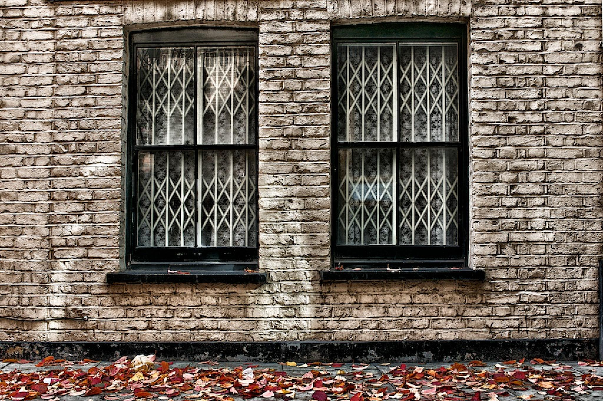 Autumn in London by Massimo Usai Photographer