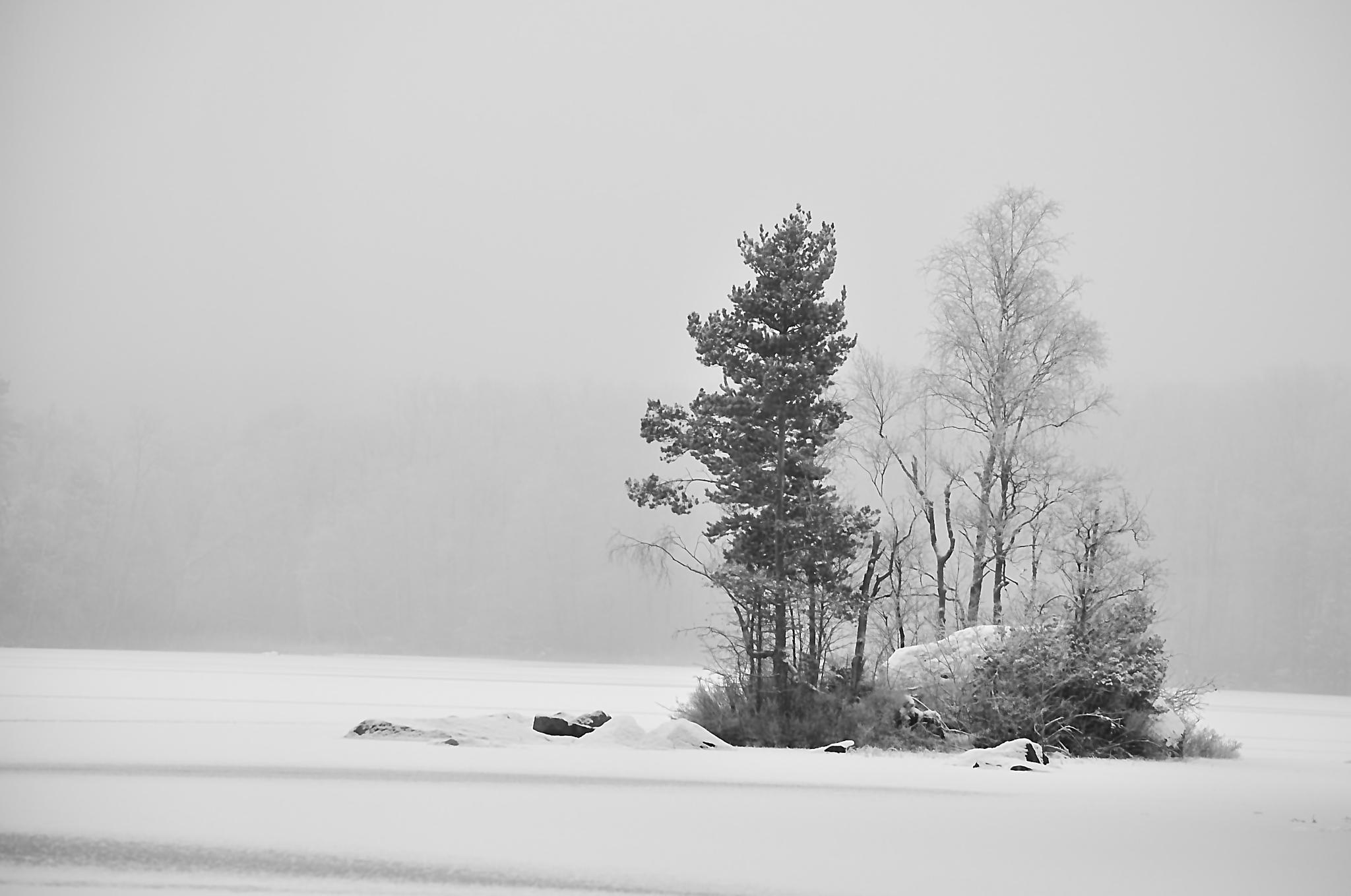 Winter by moeng