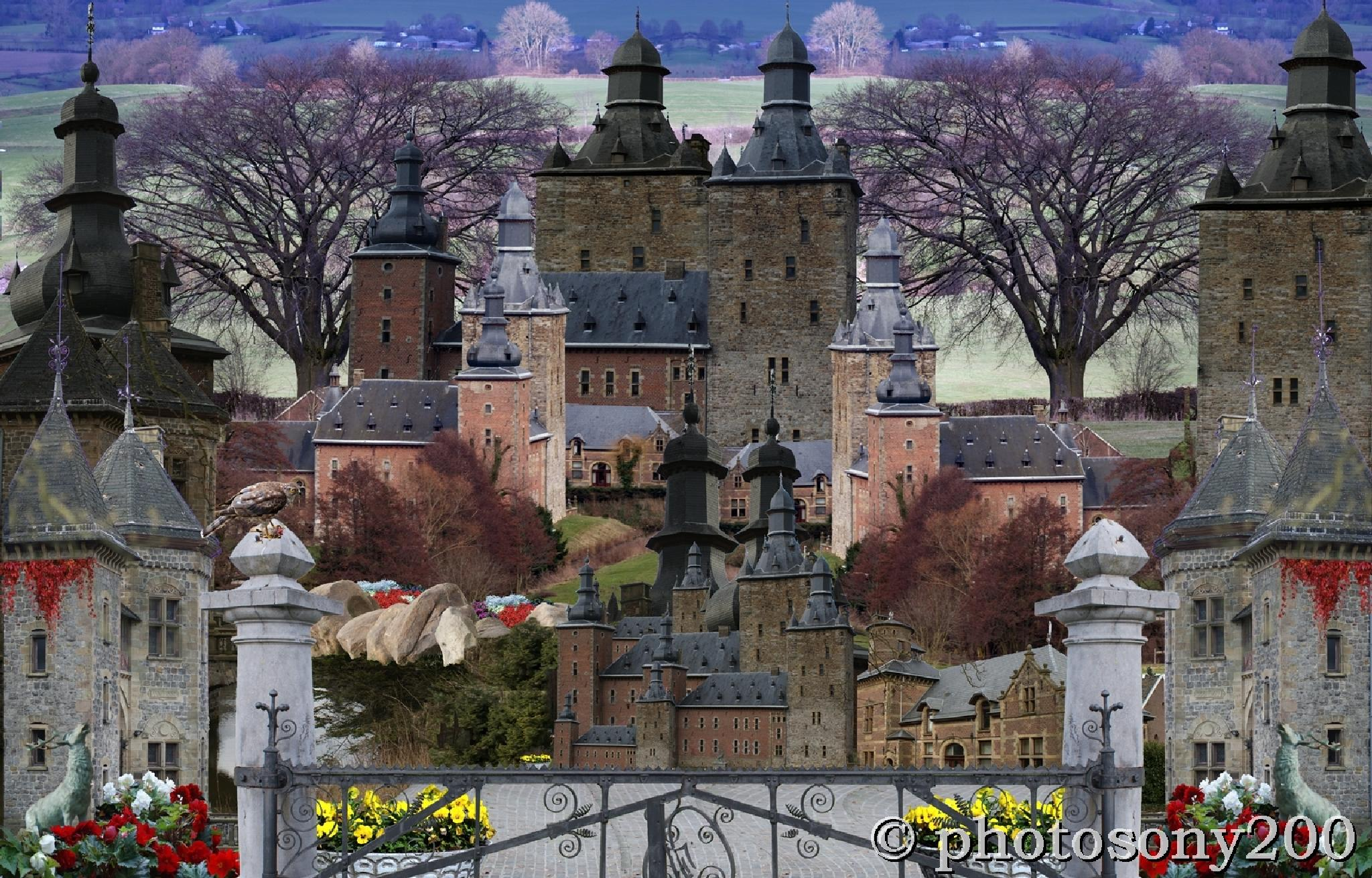 Chateaux Beusdael by Paulus Charles
