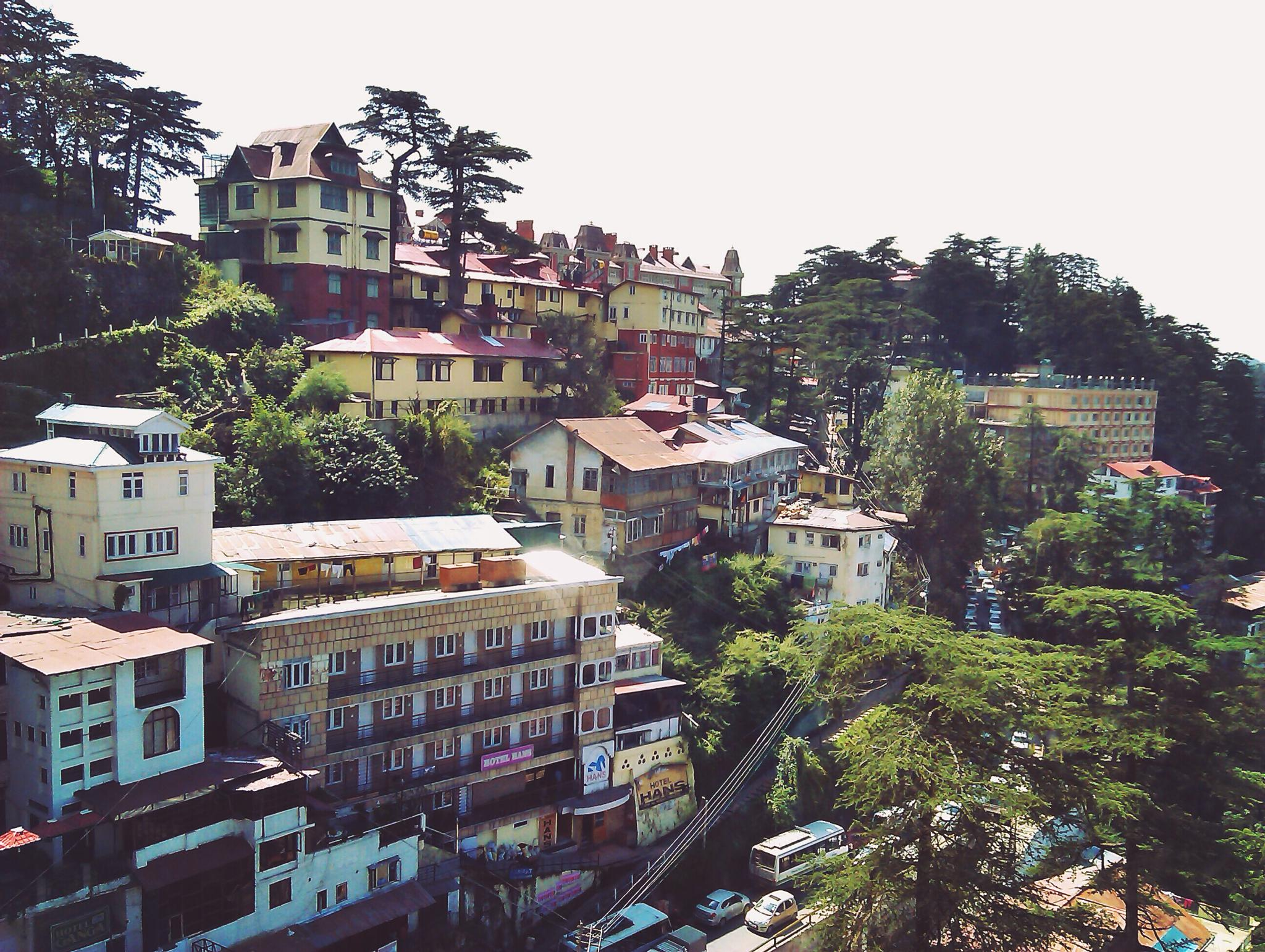 Shimla  by Sameer Arora
