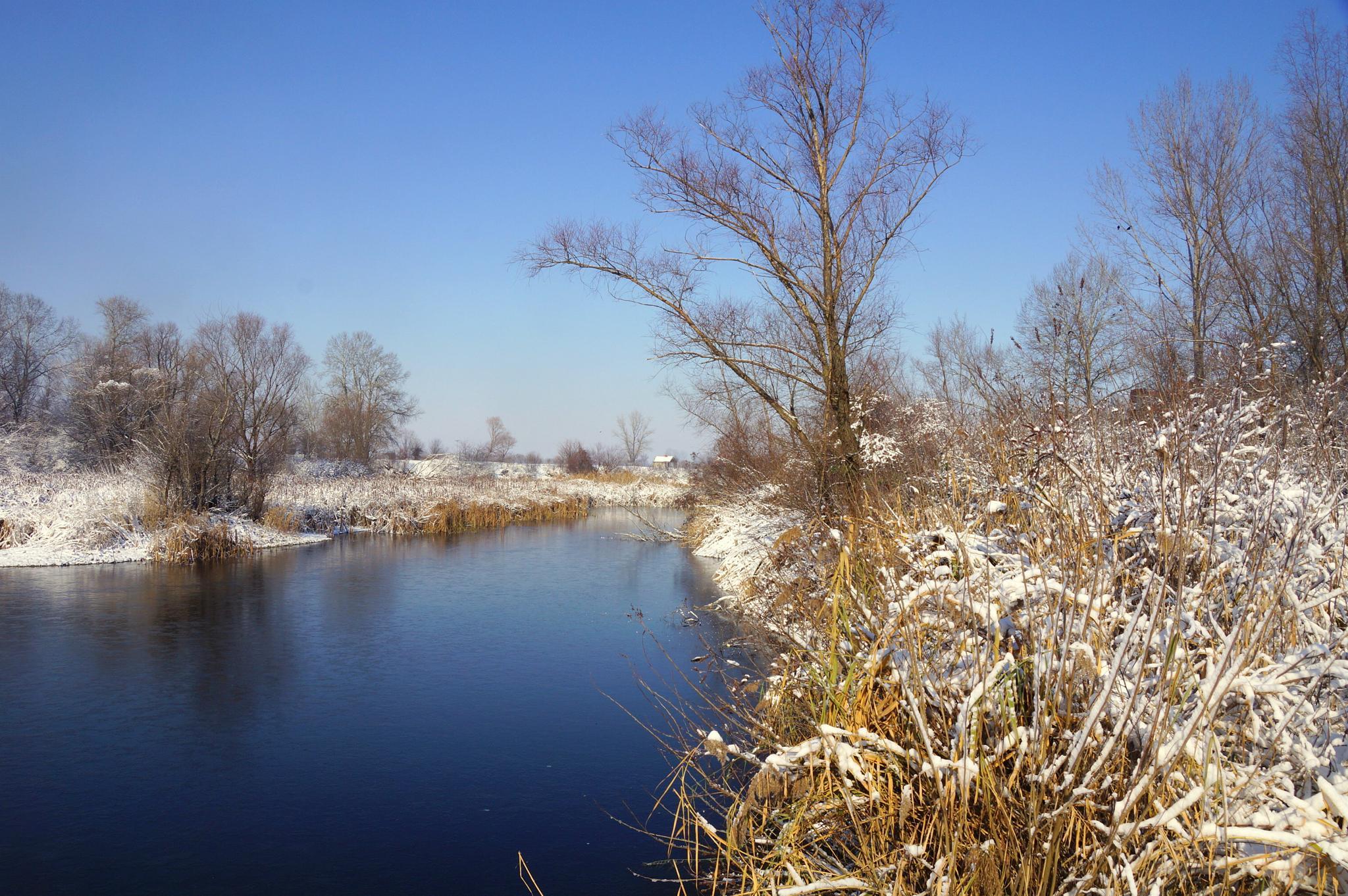 winter by sreten nakićenović