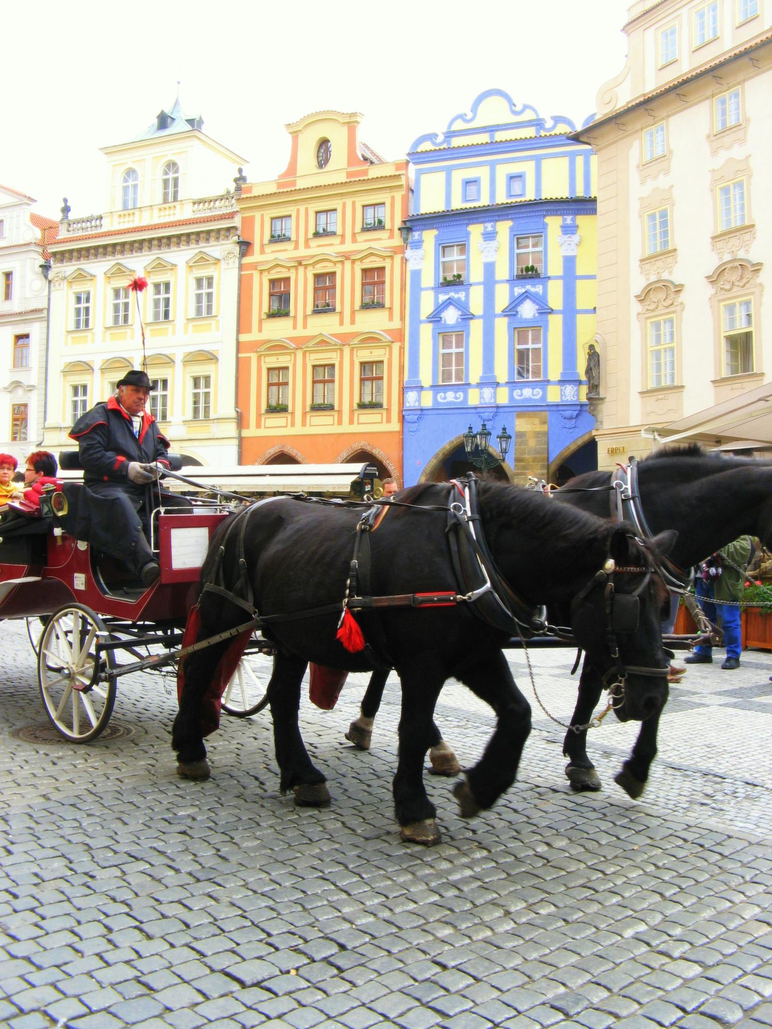Prague by sreten nakićenović