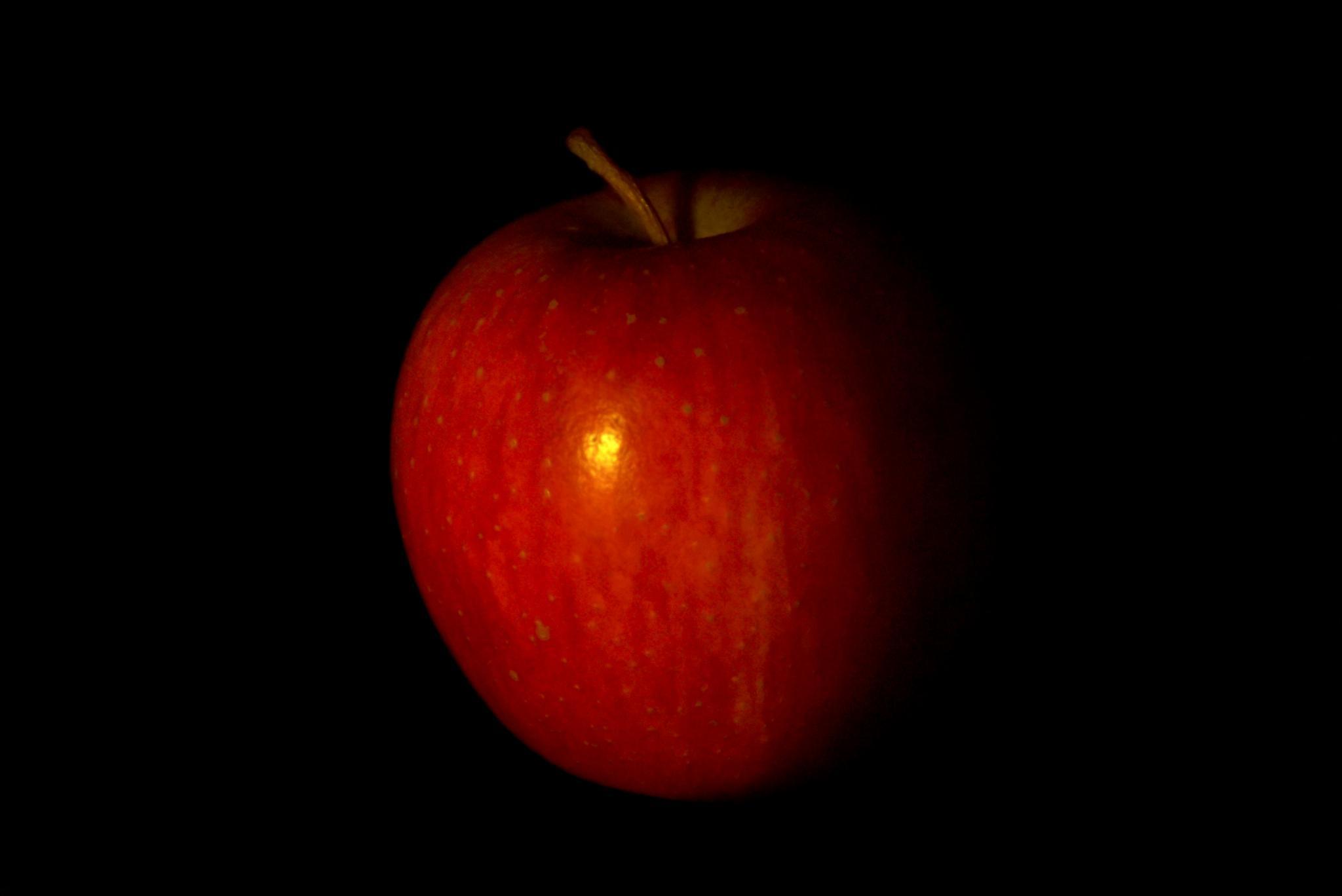 apple by sreten nakićenović
