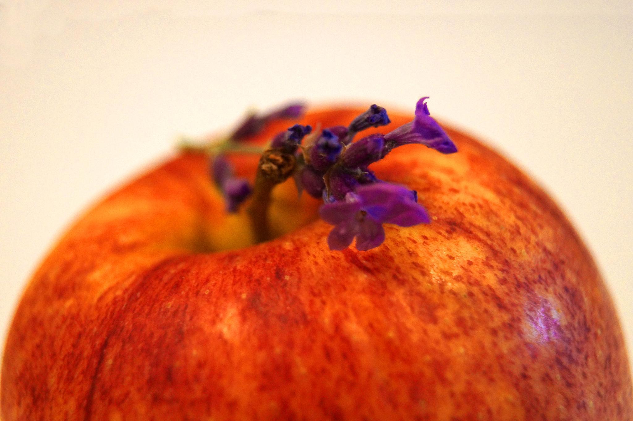 an apple by sreten nakićenović