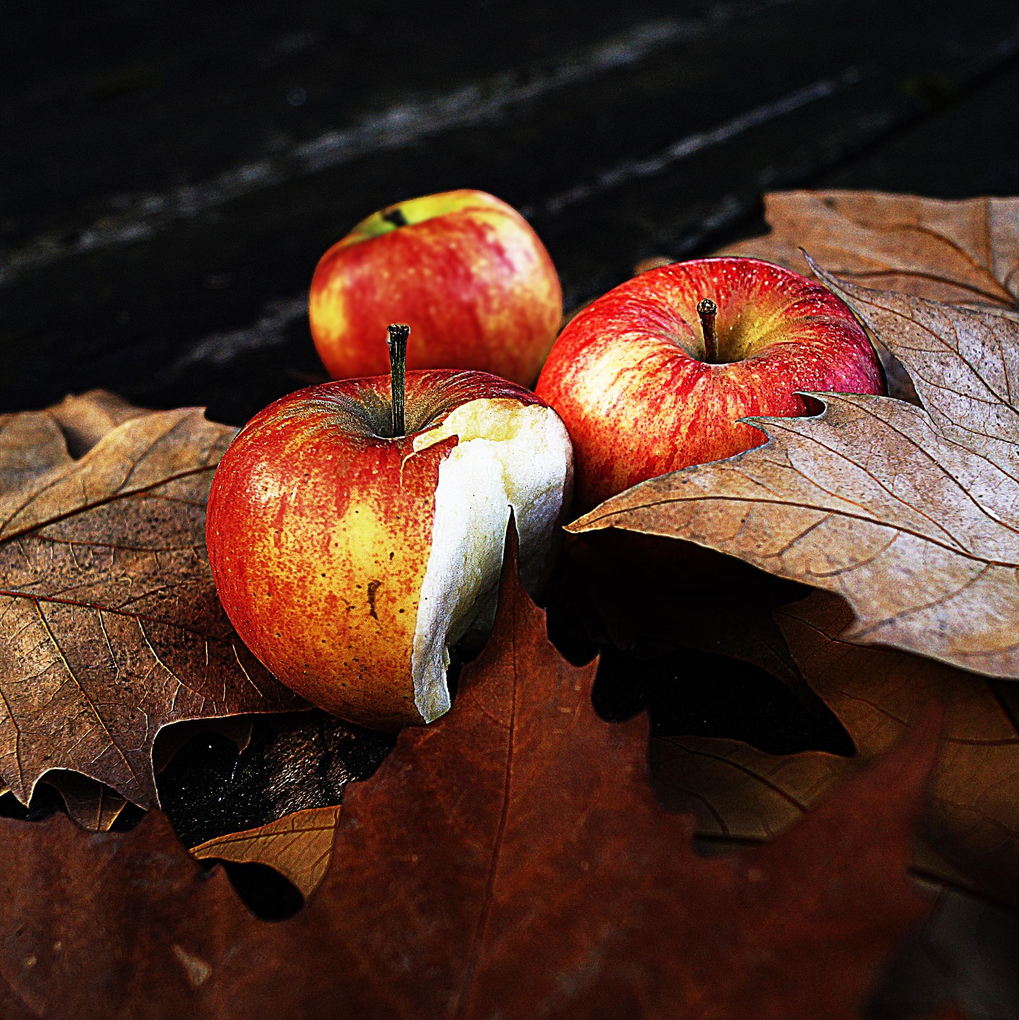Three apples by sreten nakićenović