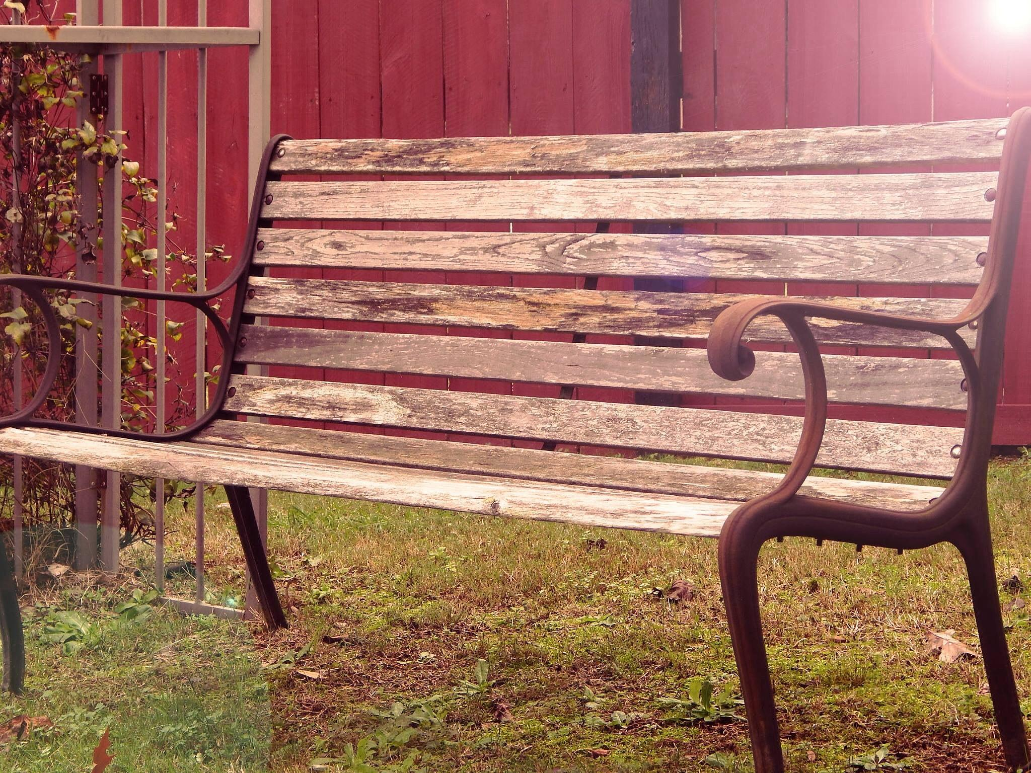 Wooden bench by shannen.kocher