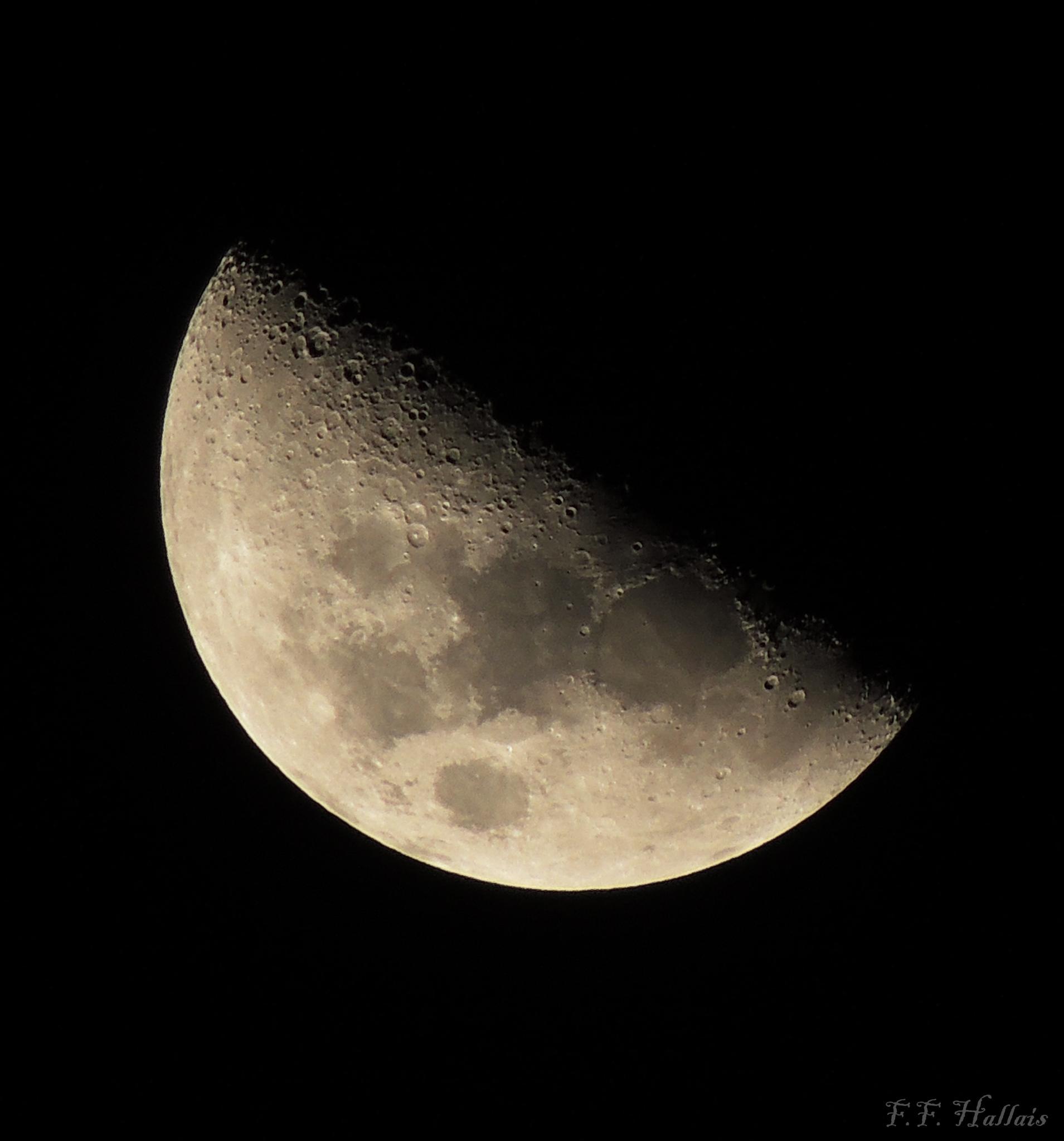 Lua by Fernanda França Reis