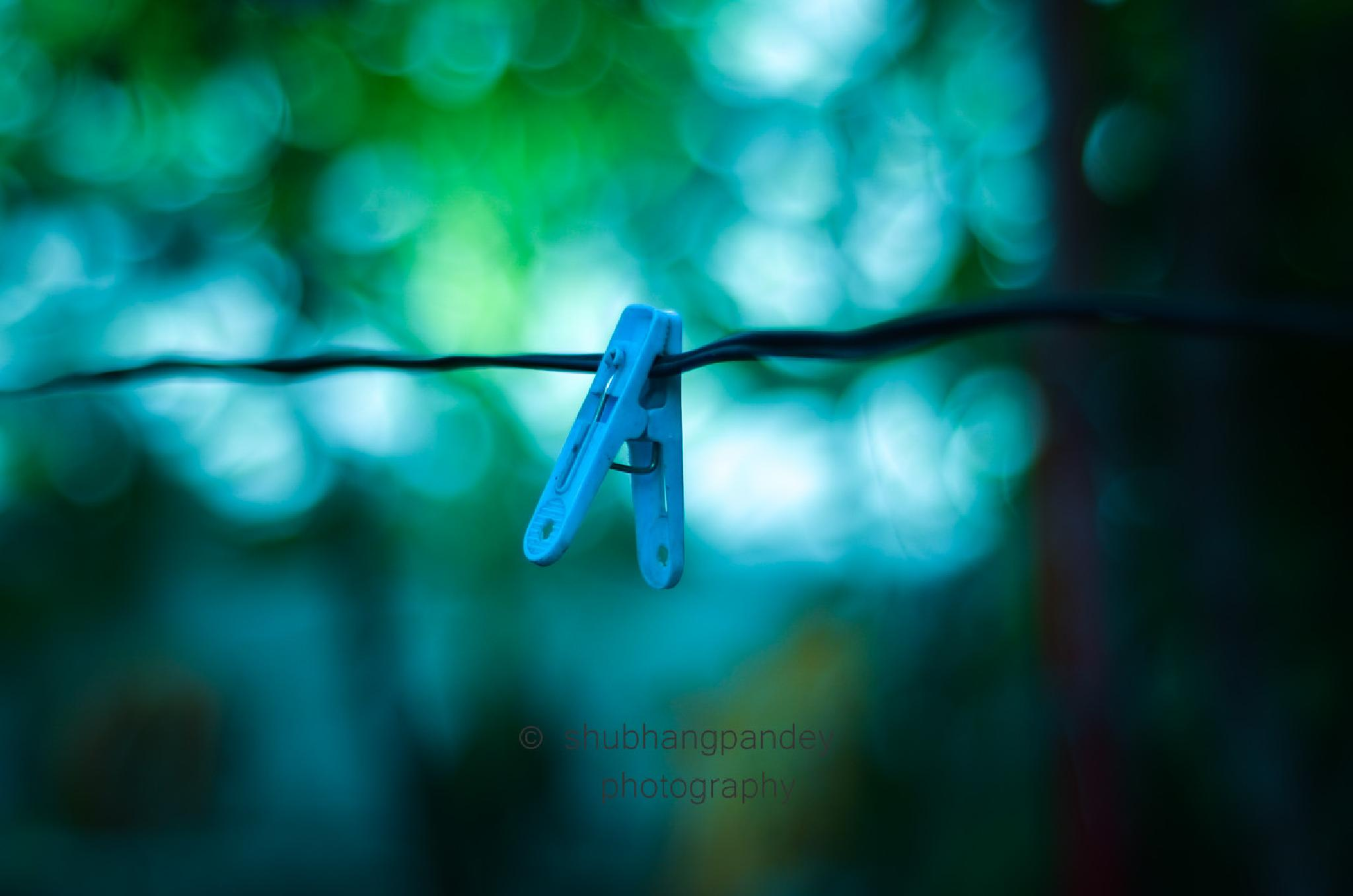 Photo in Abstract #alone #wire #cold #bokeh #bokehilicious #pin