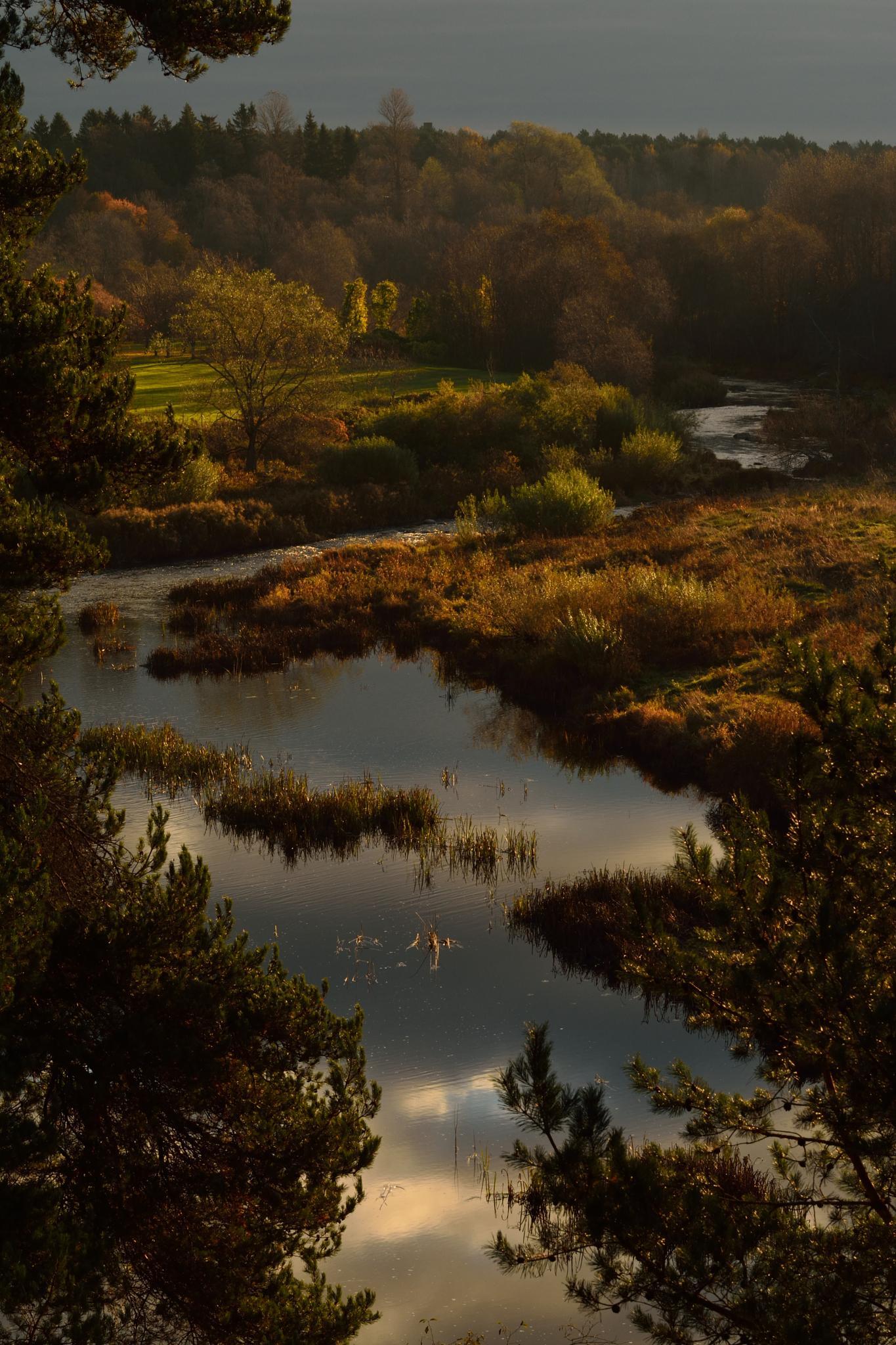 """October"" by Ole Vikshaaland"