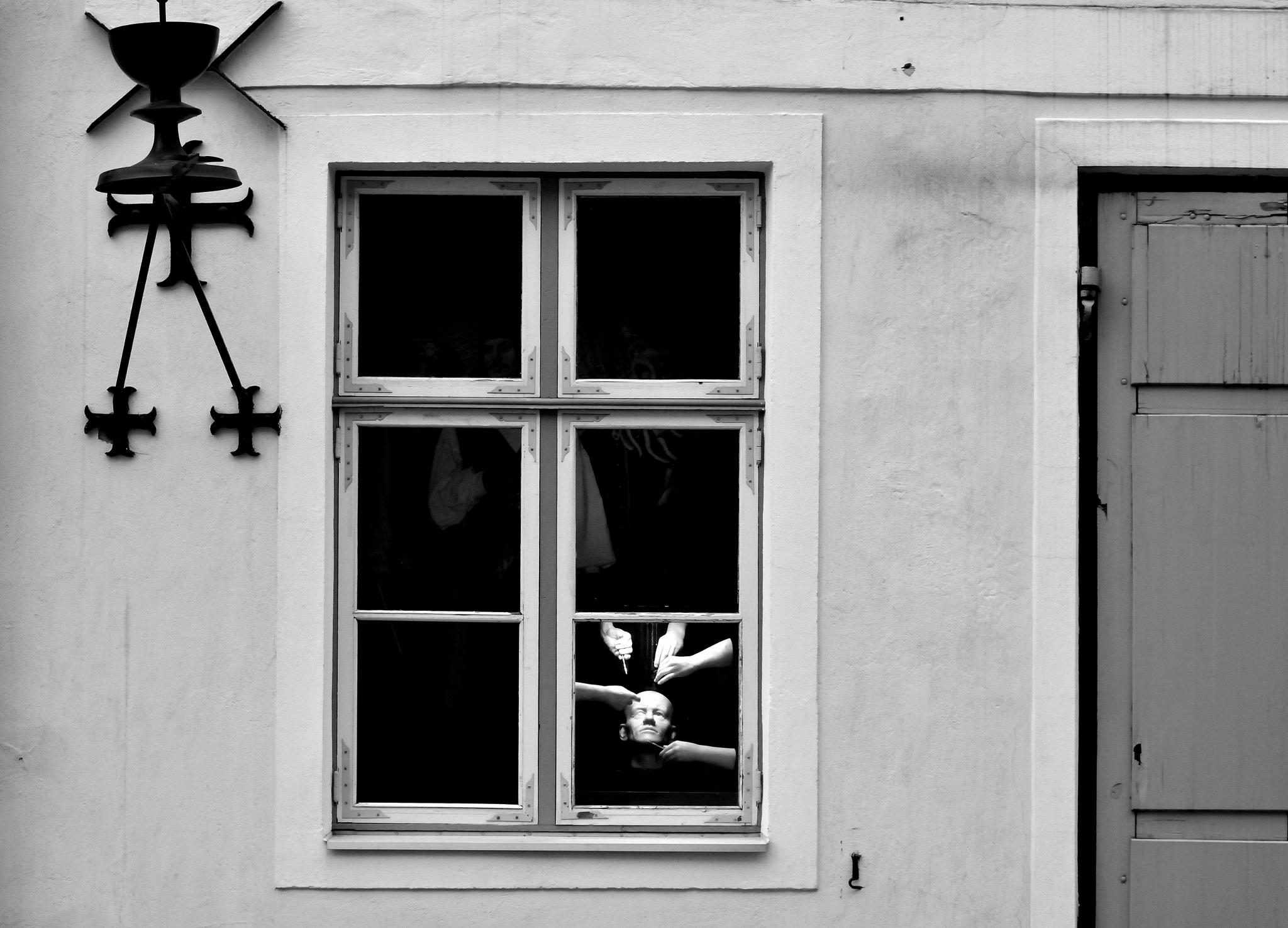 """""""Mystery"""" by Ole Vikshaaland"""