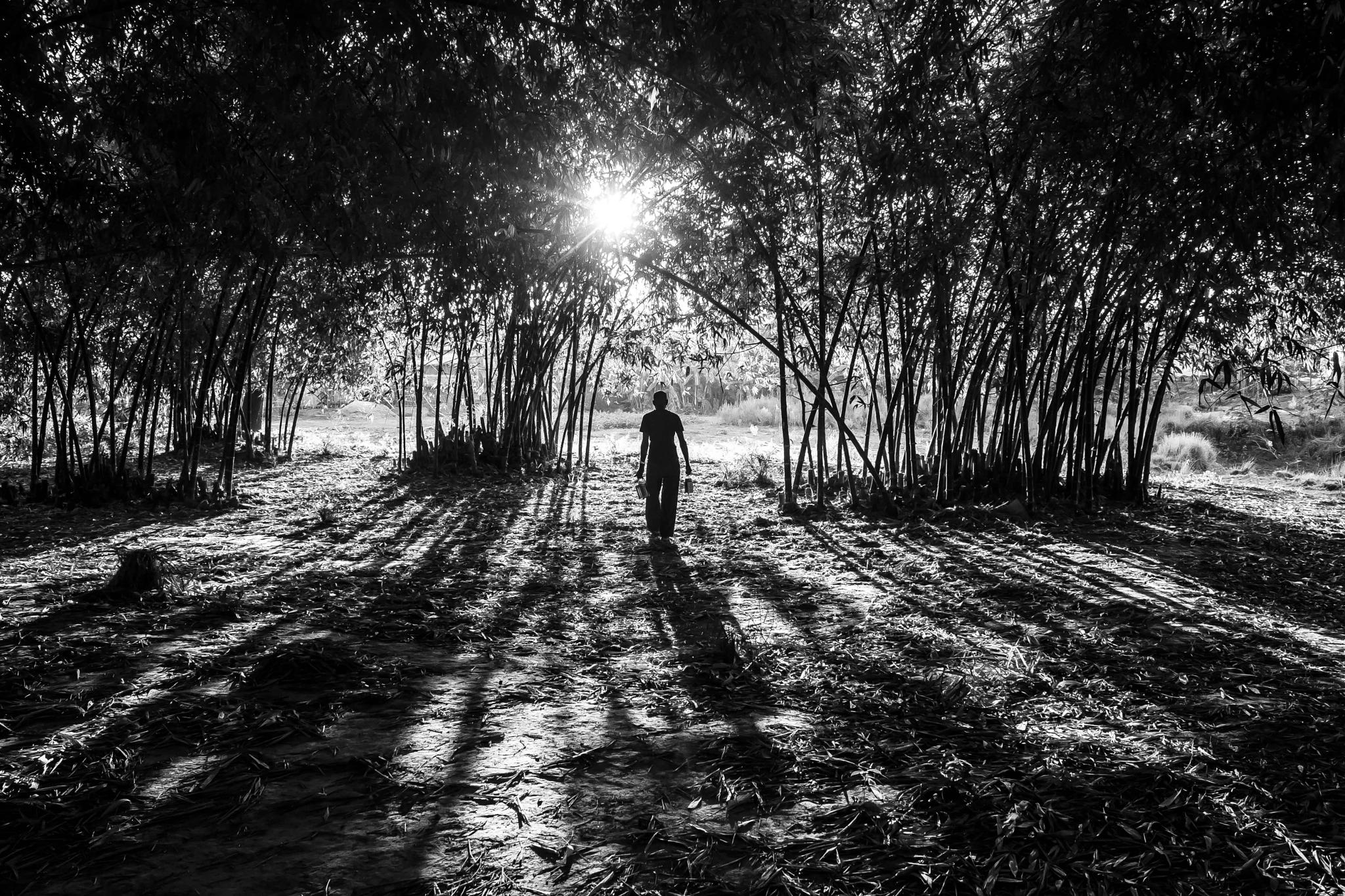 Untitled by riteshsinghsiddharth