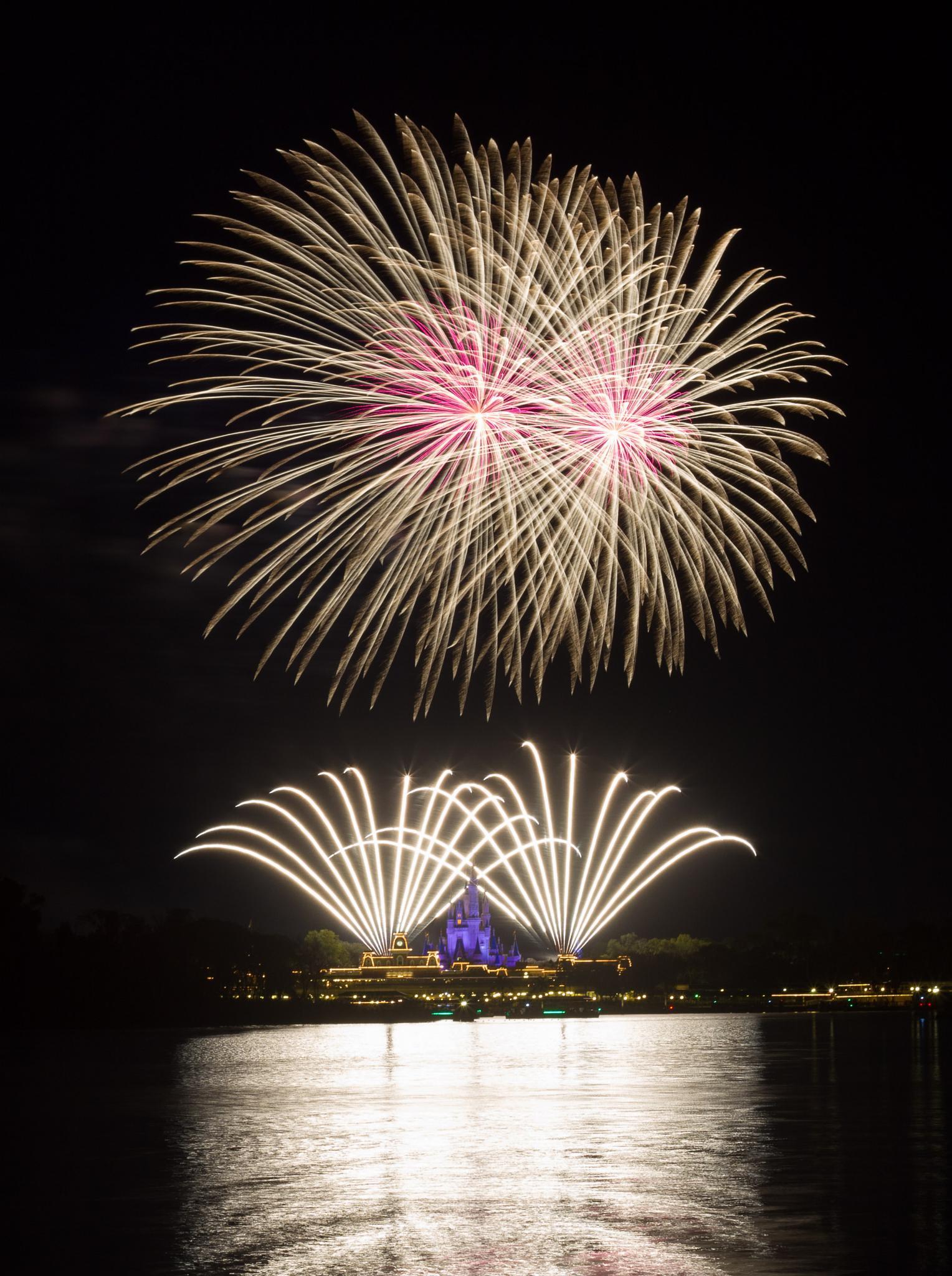 Fireworks over Magic Kingdom by Domenik Jost