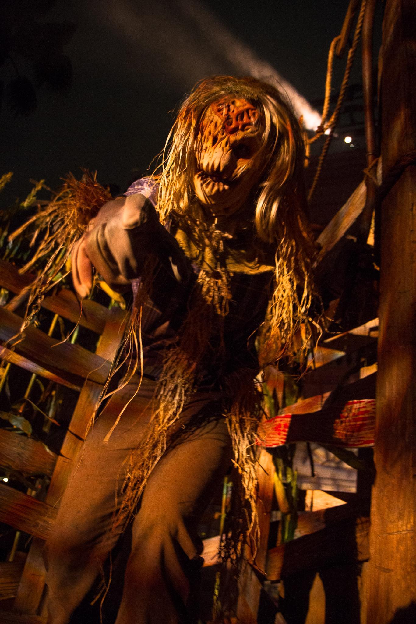 Photo in Random #halloween #horror #hhn #faceoff #scarecrow #pumpkin