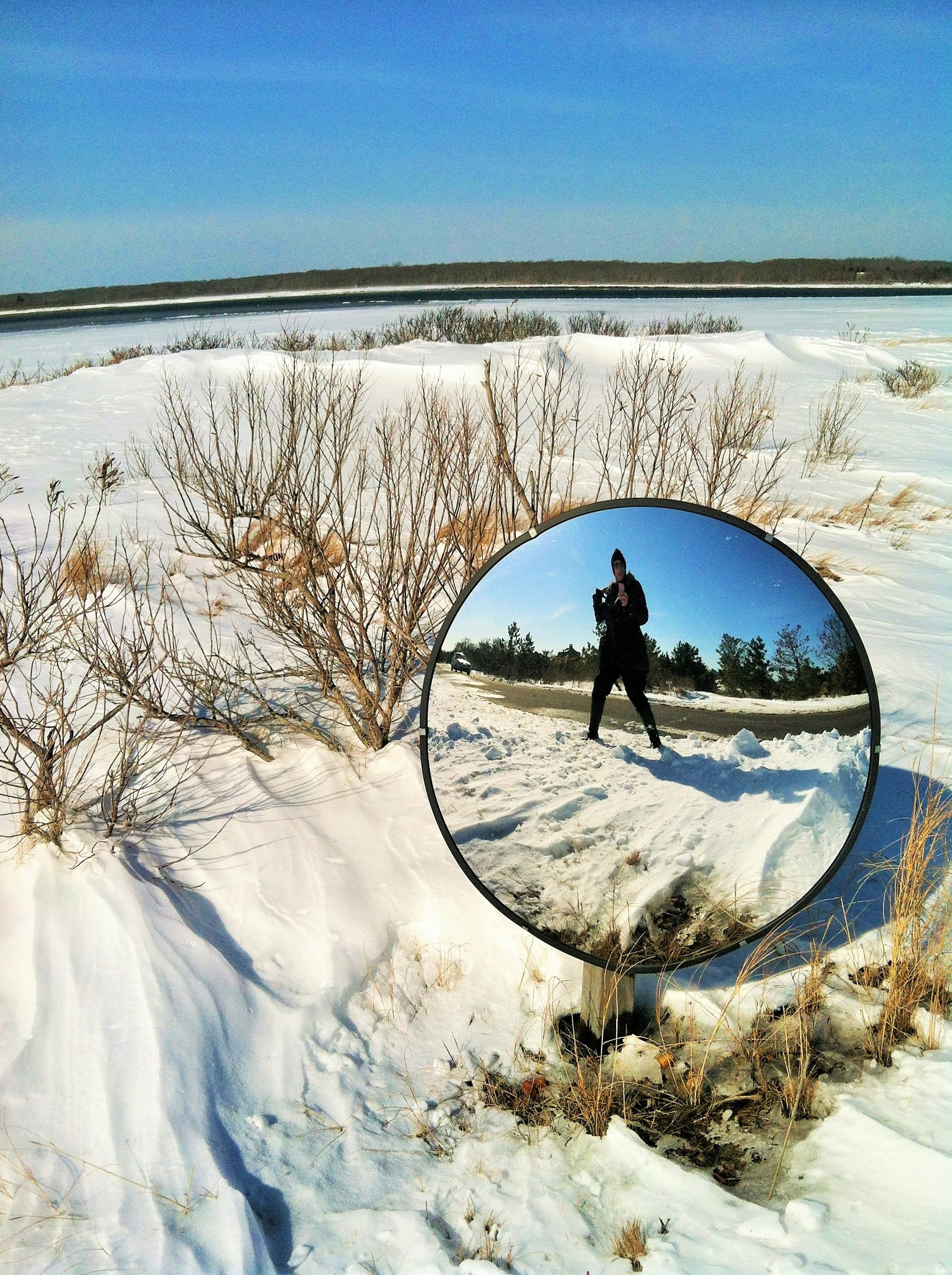 In the Mirrror by the Bay by Martha Sheehan