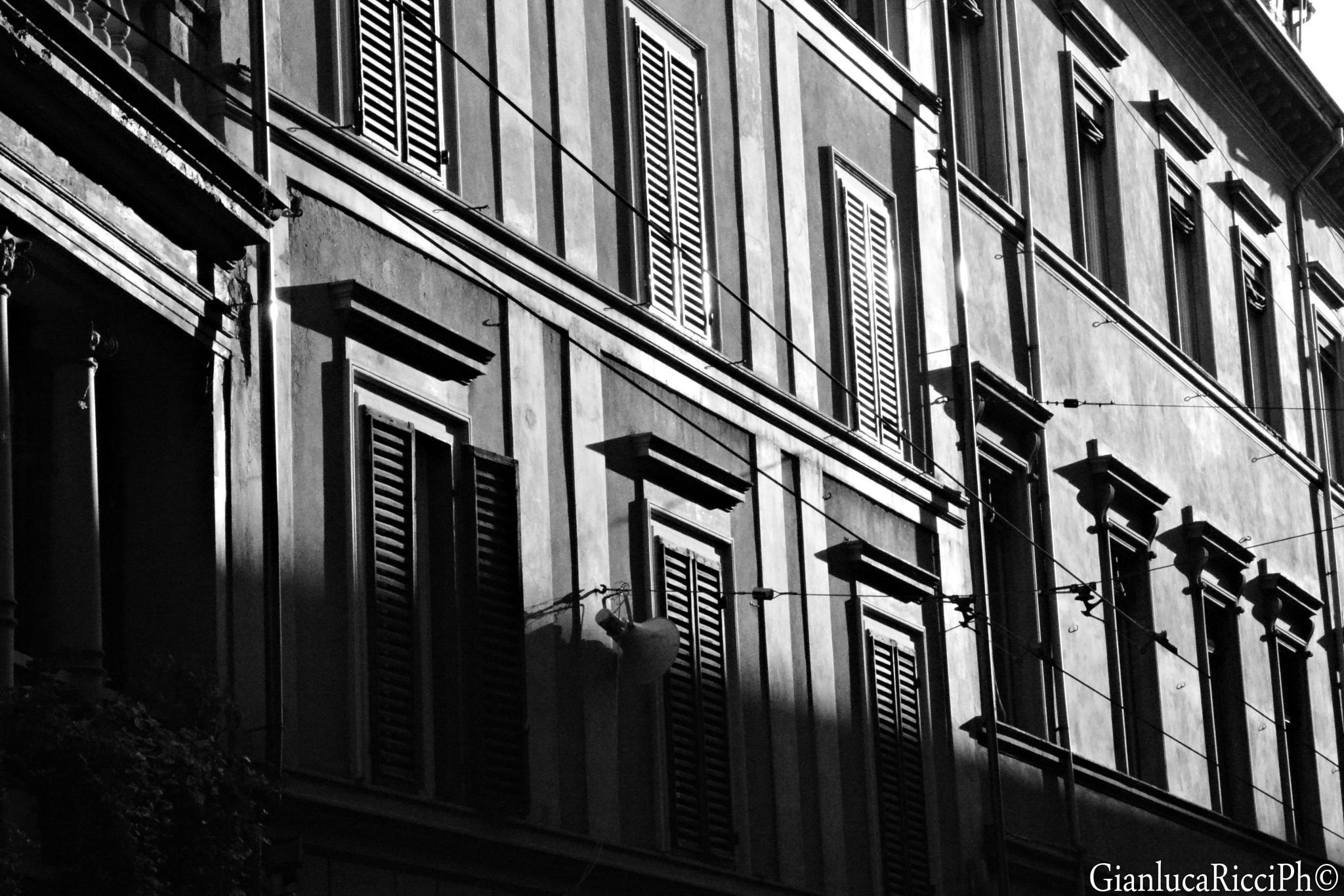 Windows by Ricci Gianluca