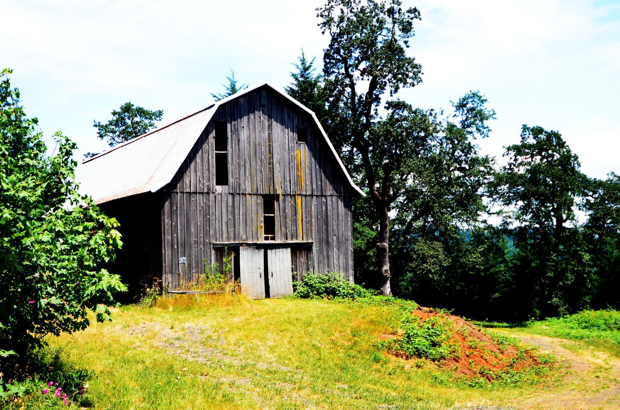 Old Barn 3 by Boonietunes
