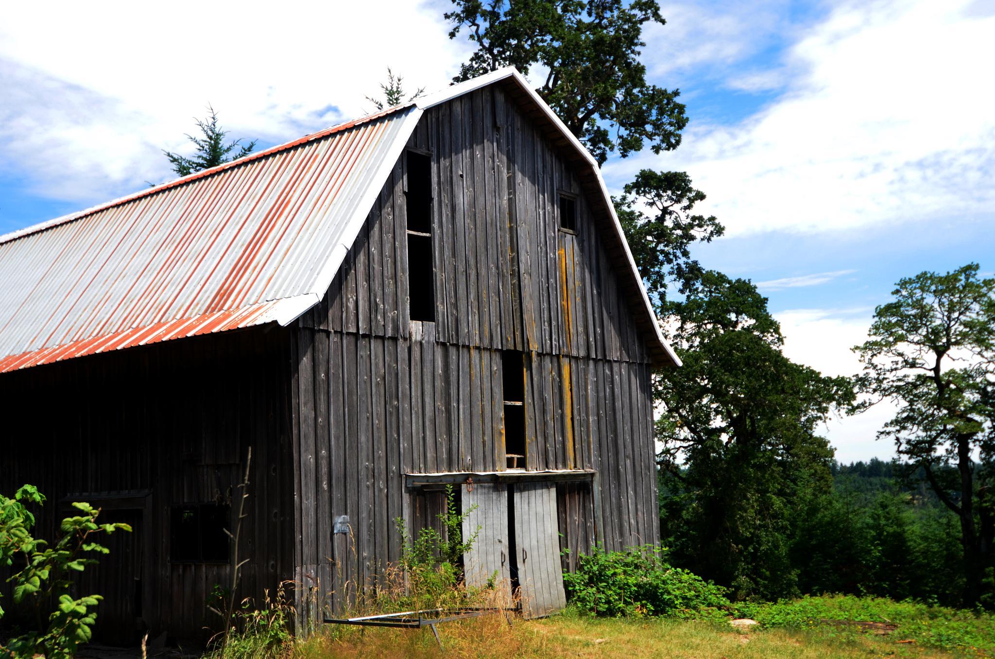 Old Barn 4 by Boonietunes