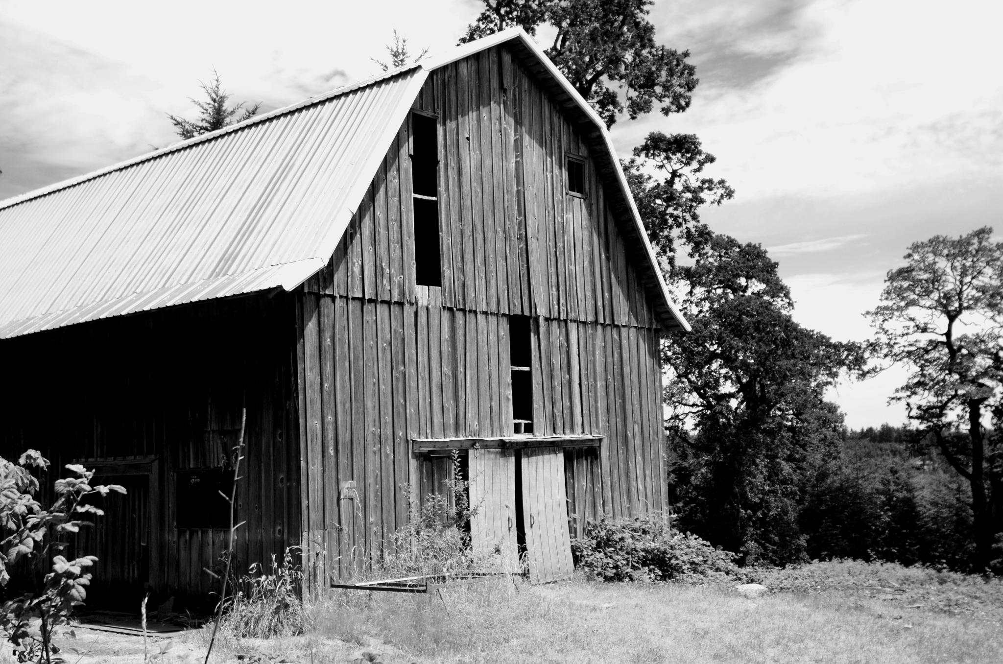 Old Barn Black and White 2 by Boonietunes