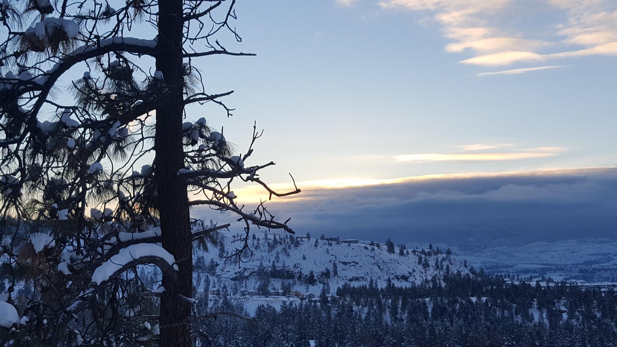 A Winter Wonderland by JeannieB