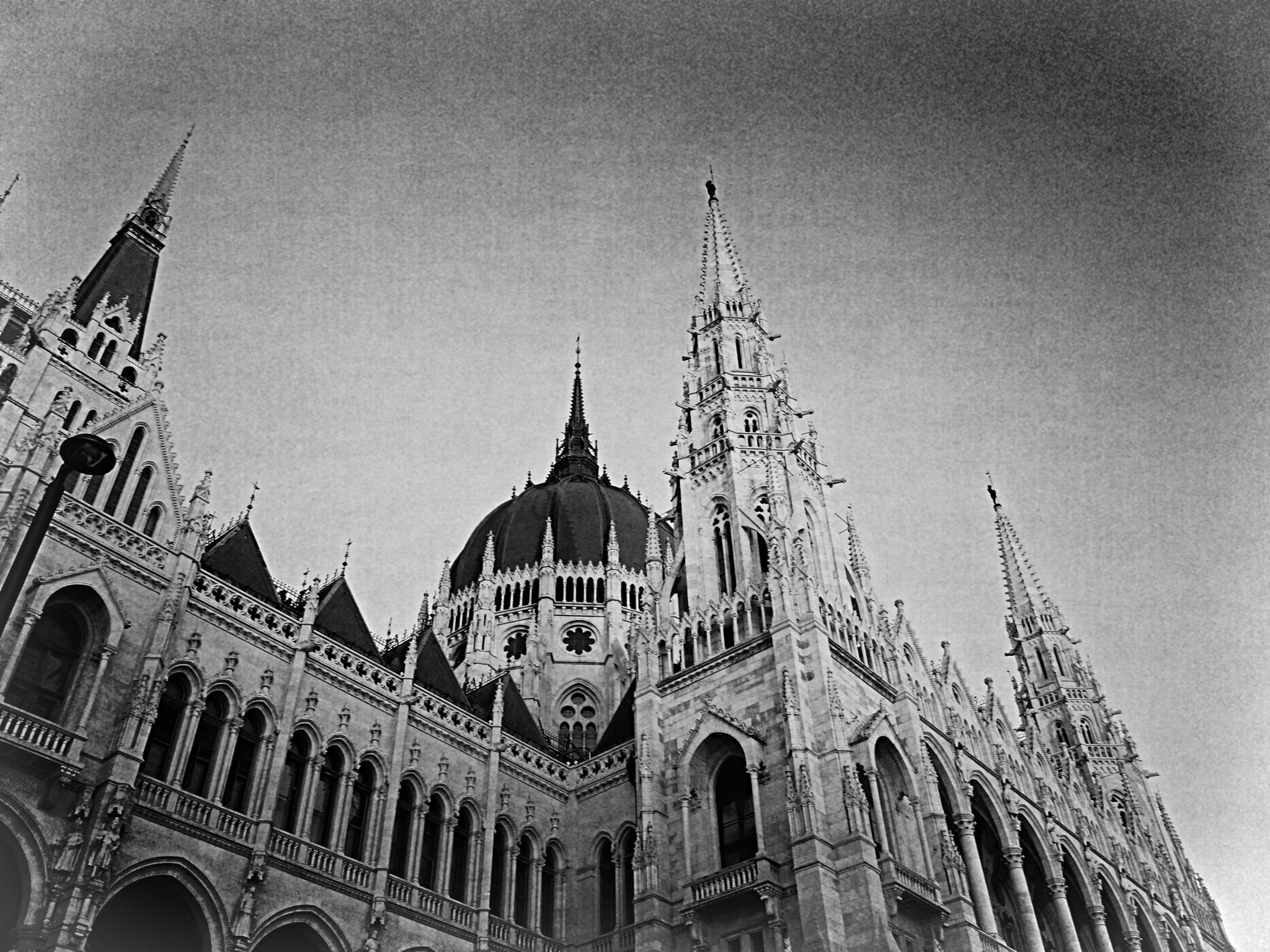 The Hungarian Parliament Building by IleanaCatalina