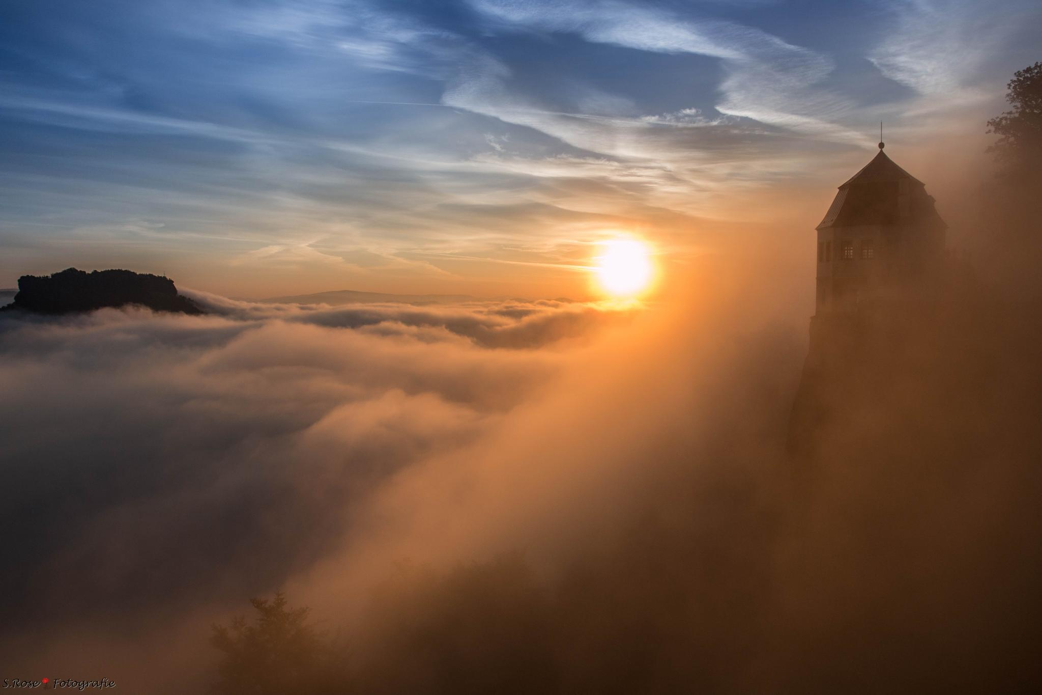 early bird sunrise with fog by S.Rose Fotografie