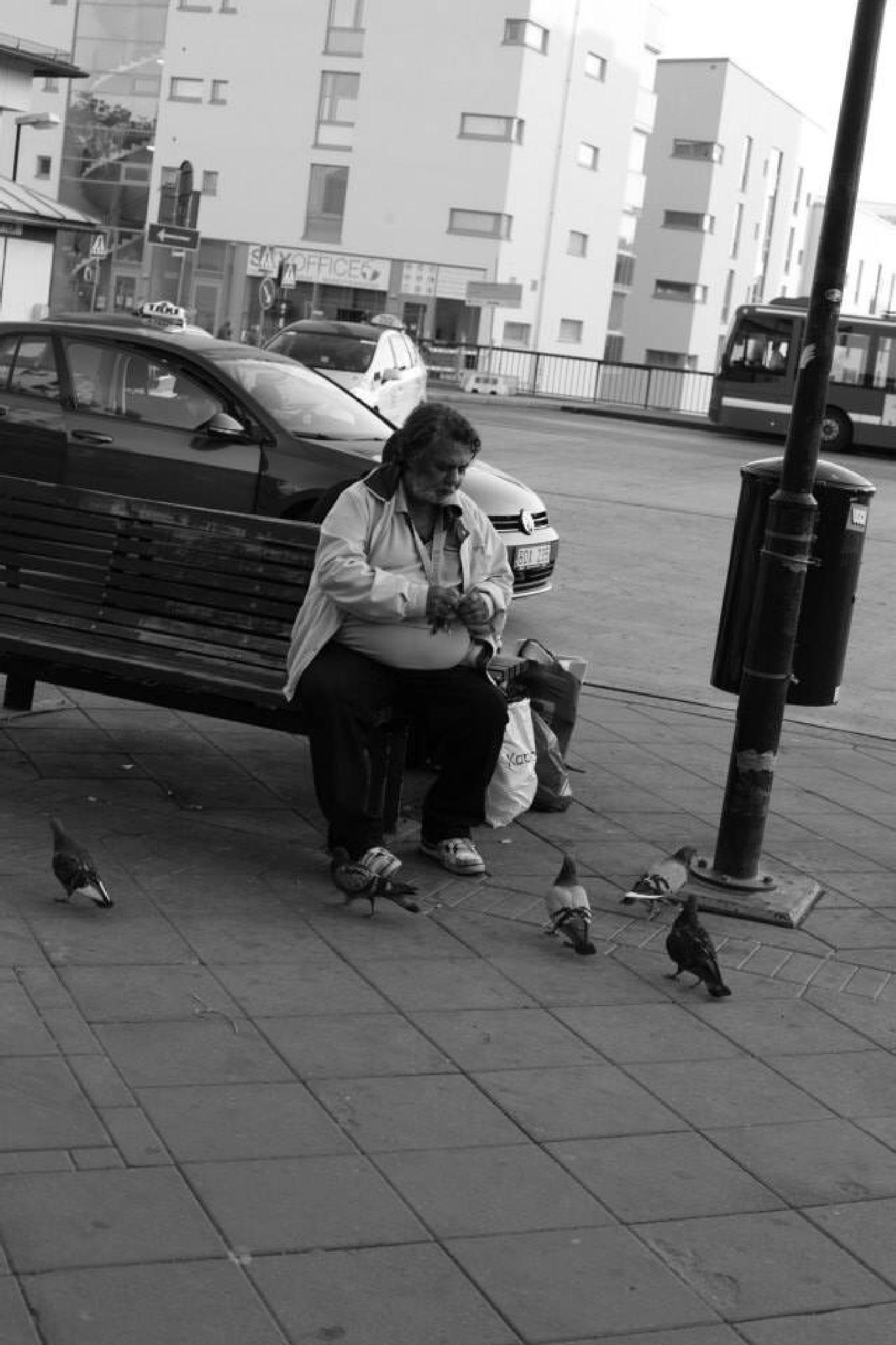 Feeding the birds by Angelicka Barua