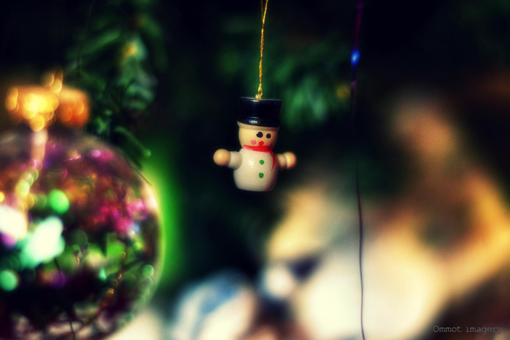 The Happy Snowman by Steve Thomas