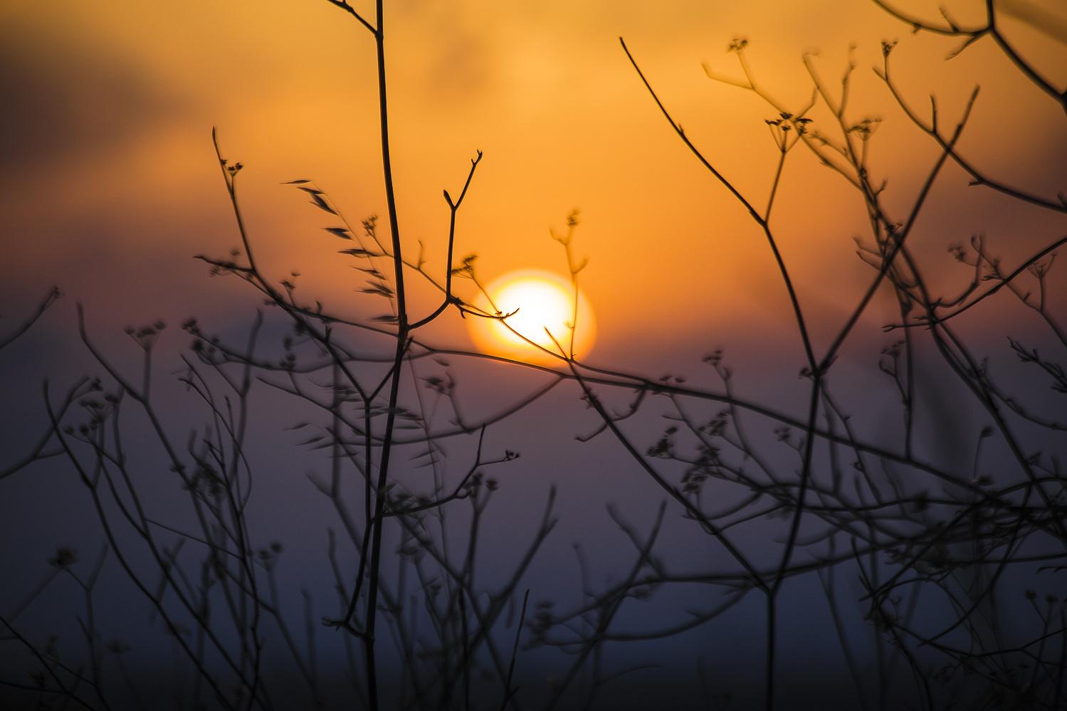 Photo in Random #nature #sunset #landscape