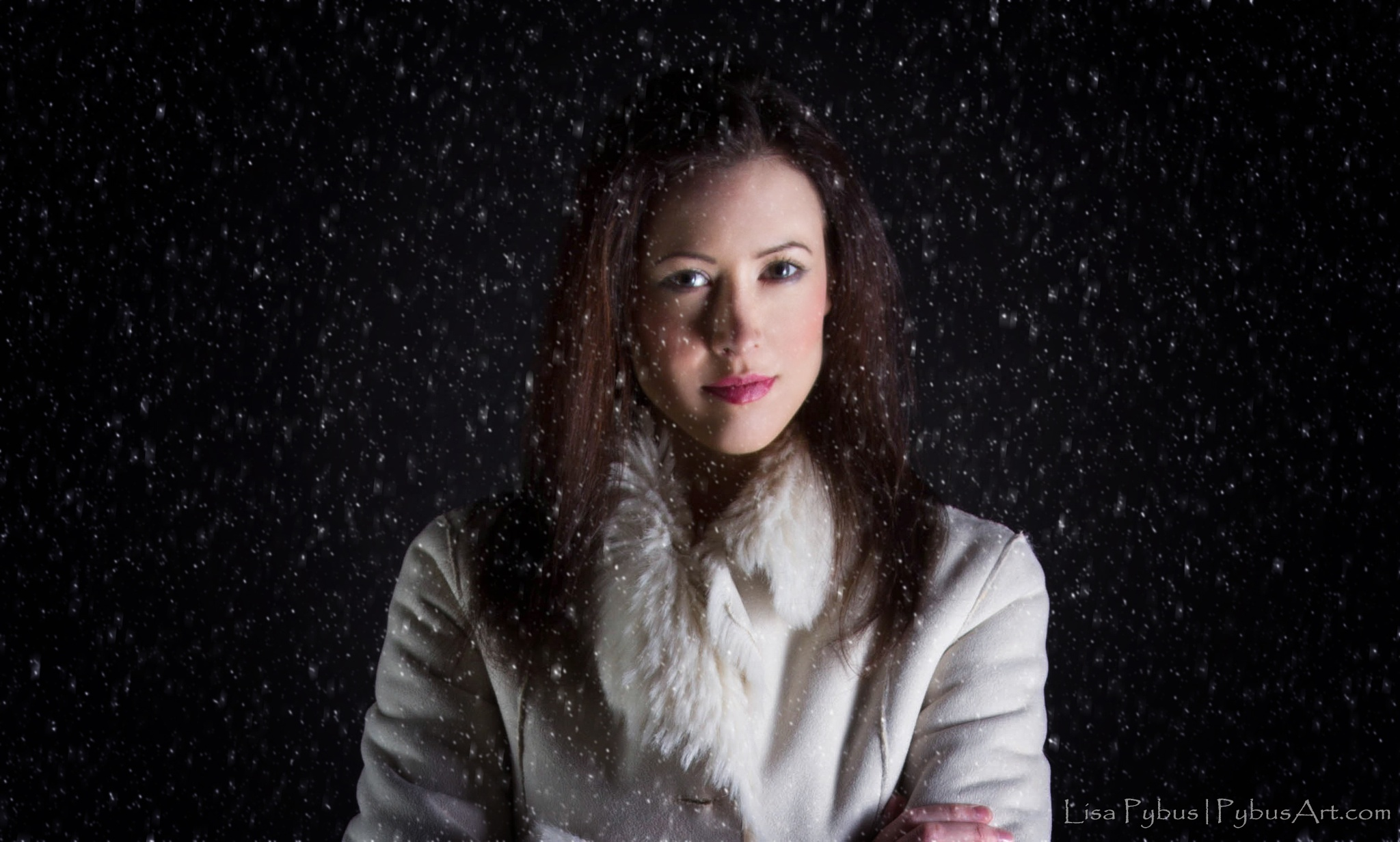 Let it Snow by Lisa Ford