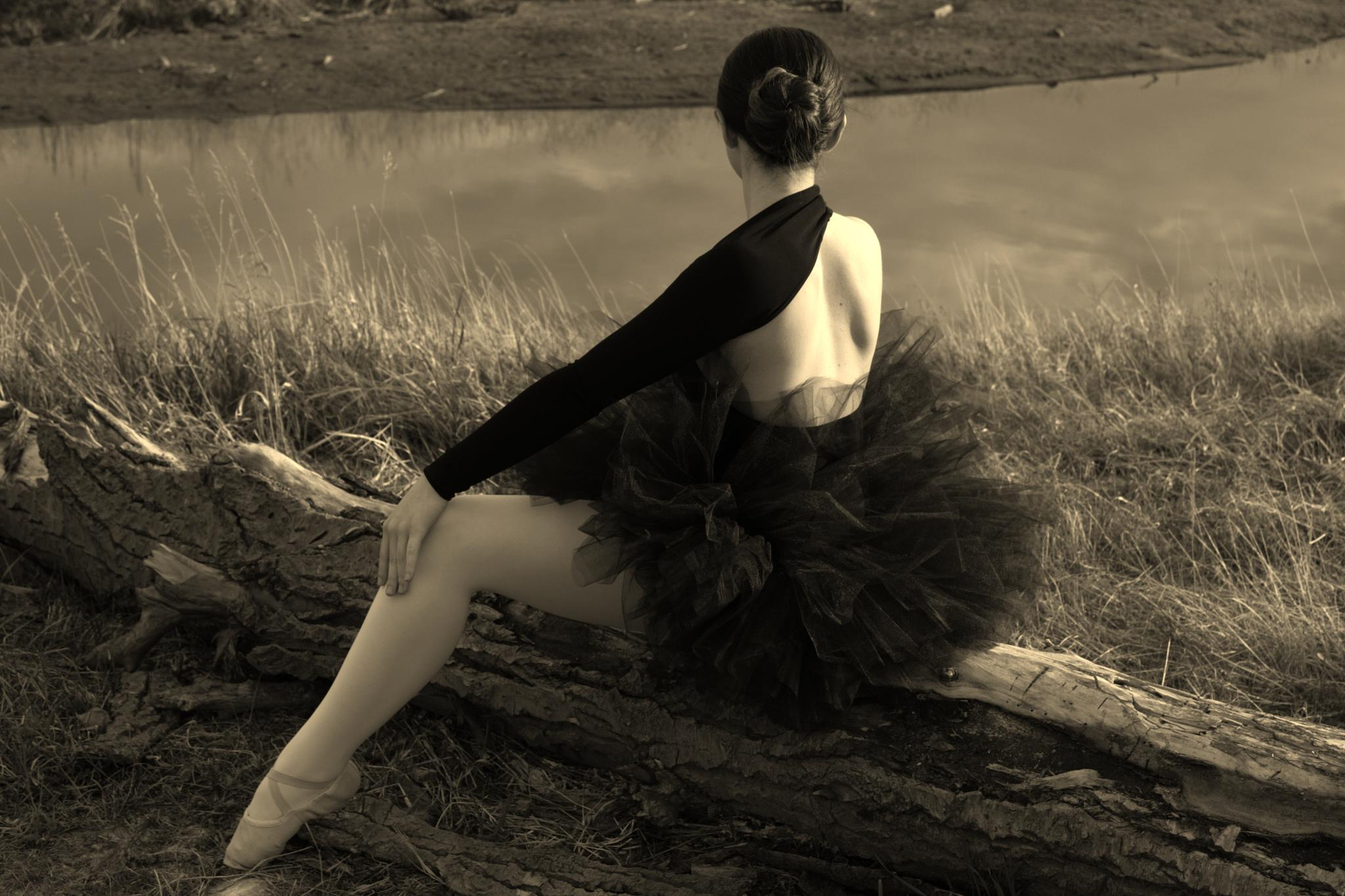 The Ballerina by nancy.makowecki