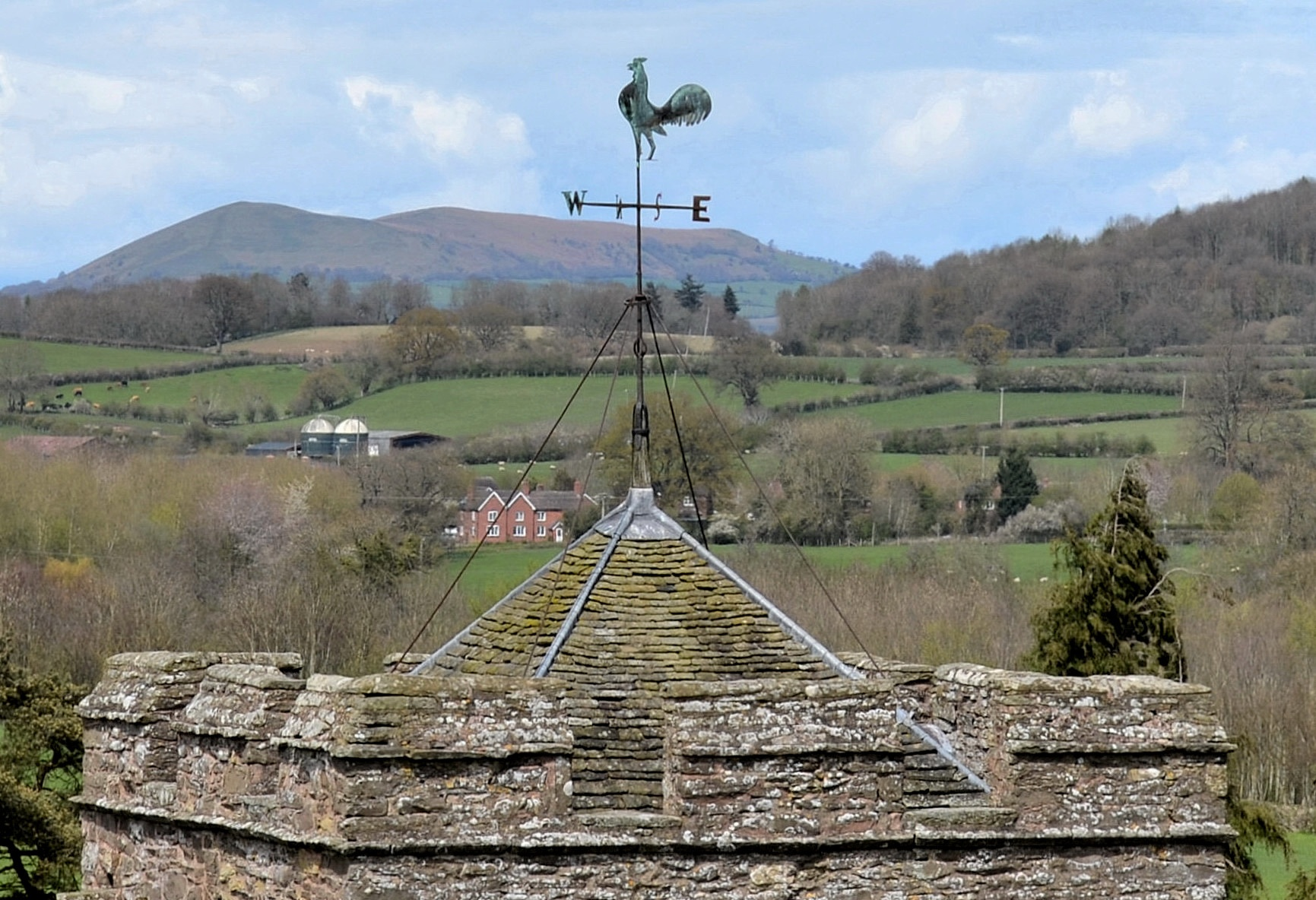 Weather vane by AndyWaters